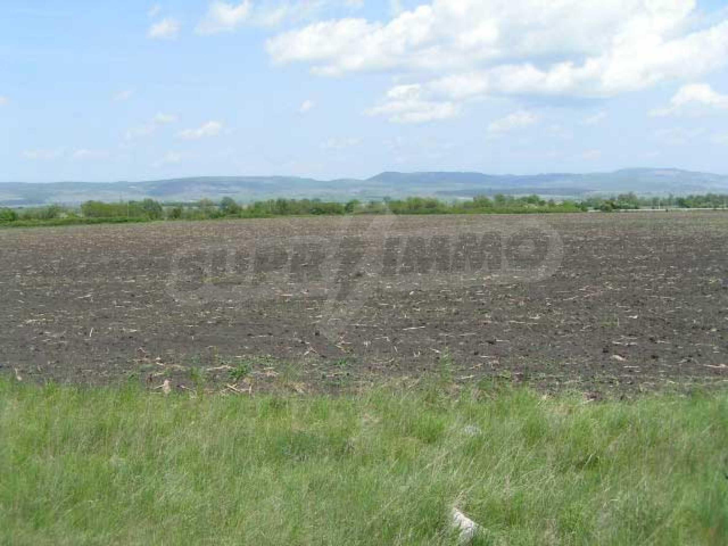 Земельный участок вблизи с. Храбырско