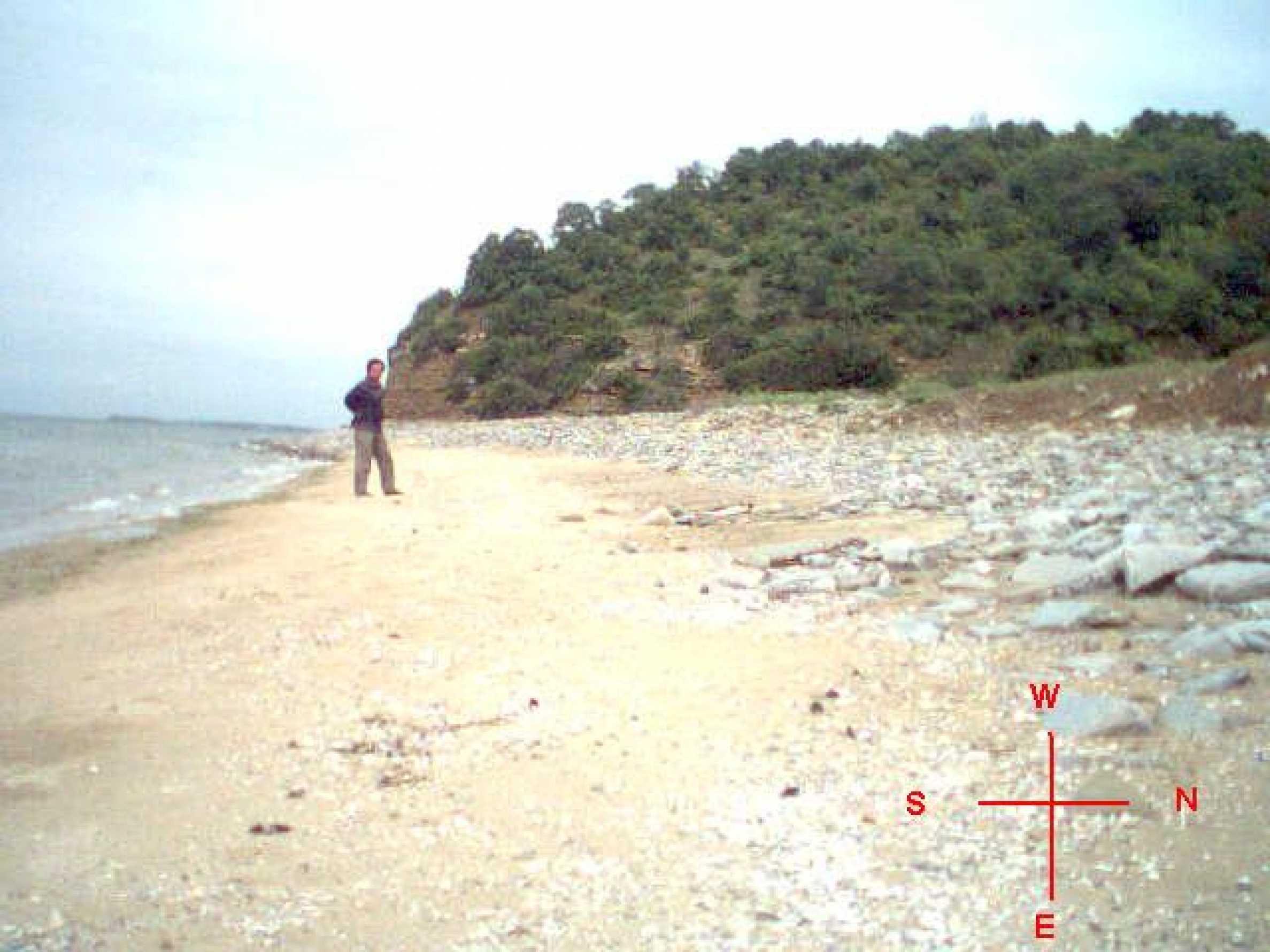 Урегулиран парцел на първа линия море 11