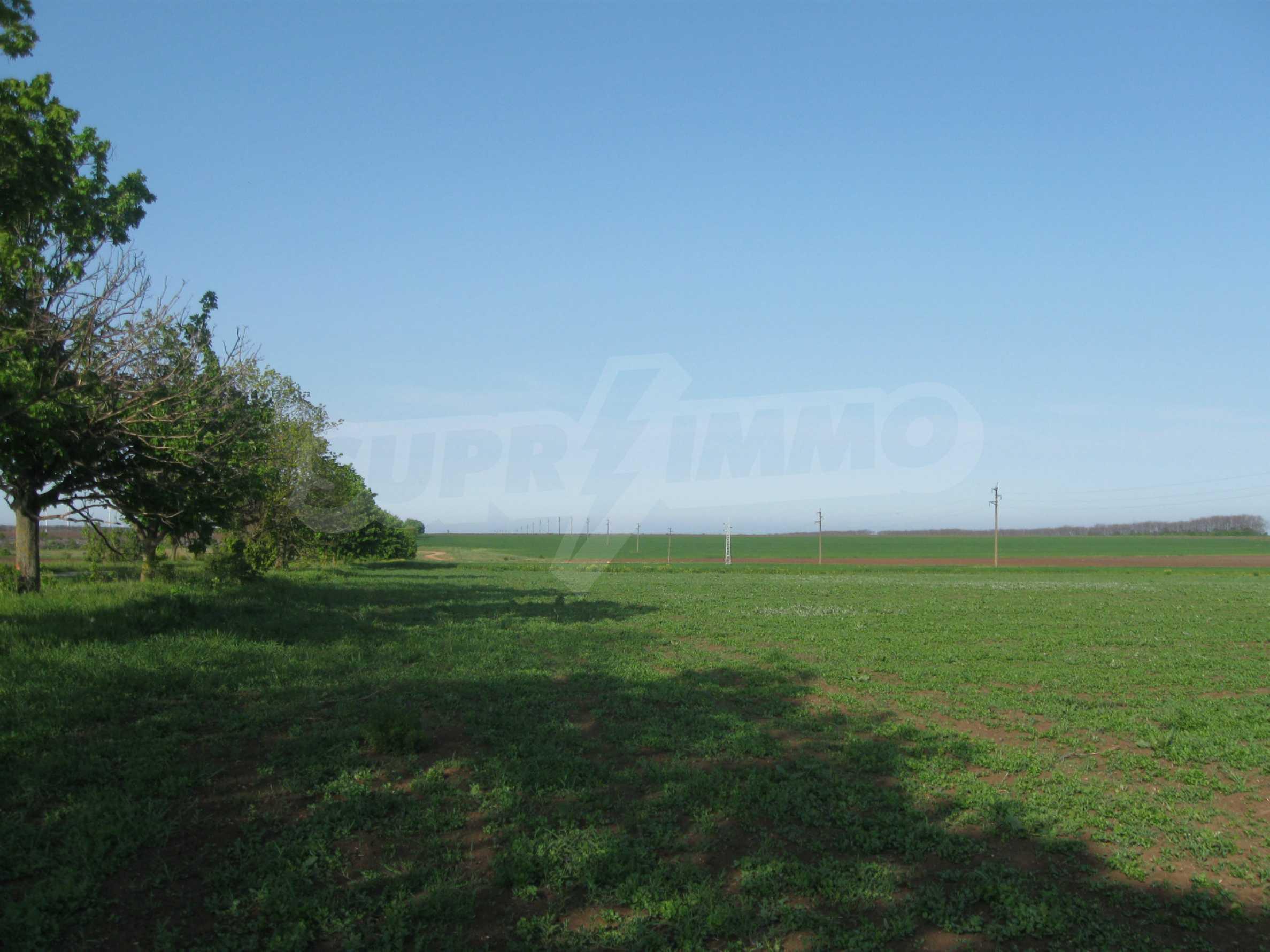 Development land in Balgarevo