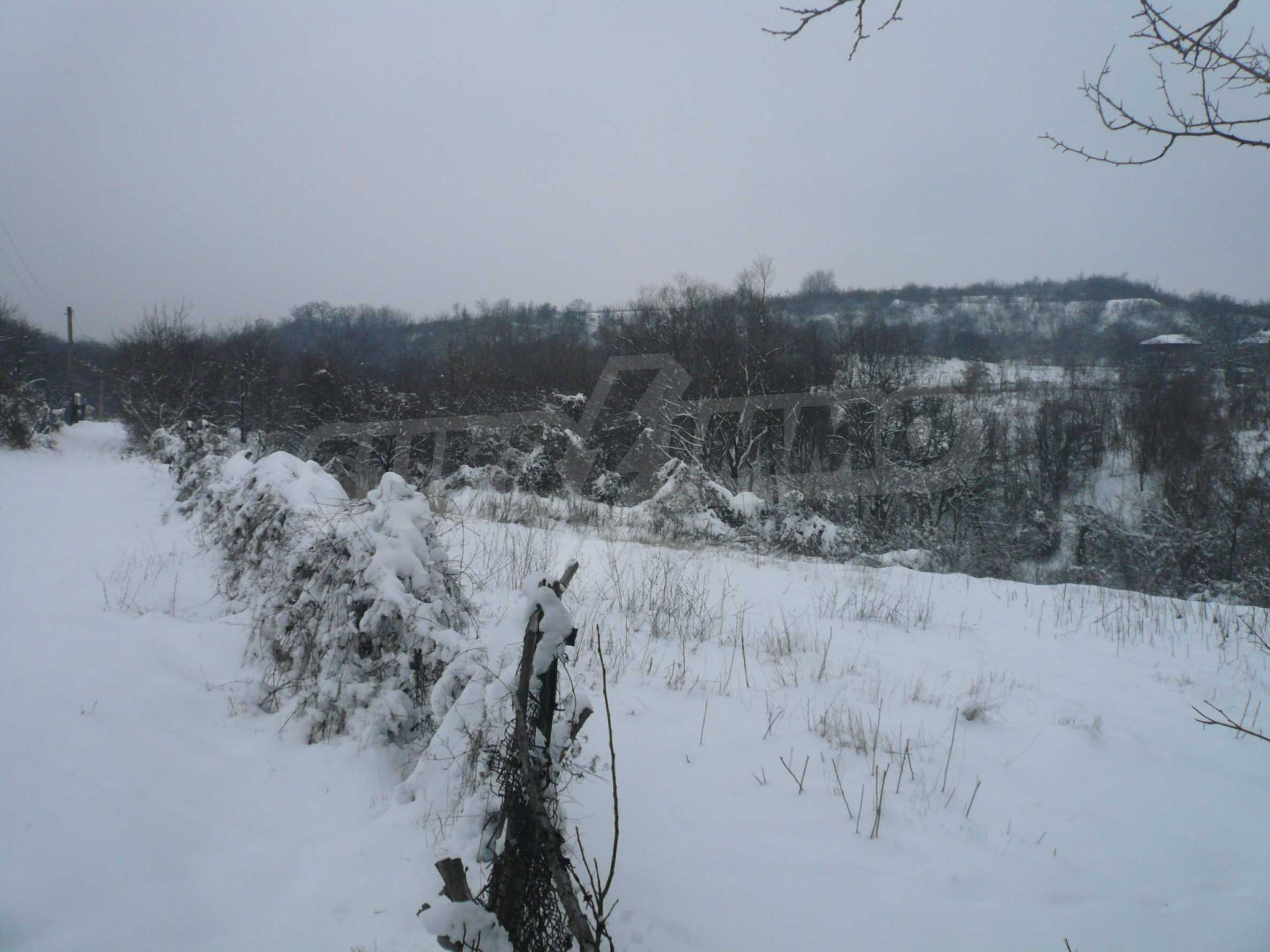 Grundstück mit Blick auf die Donau 1