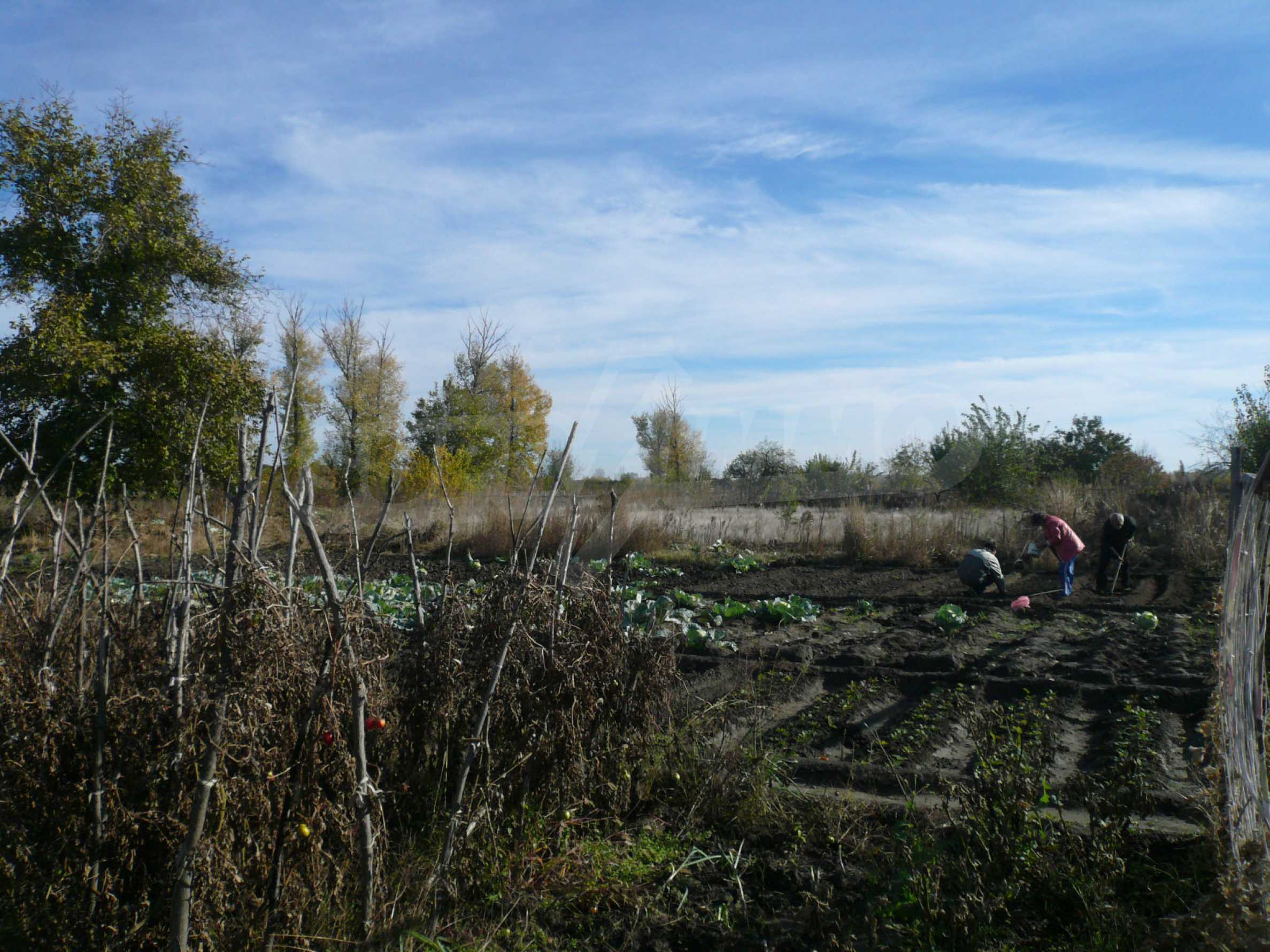 Large regulated plot of land for construction in Vidin