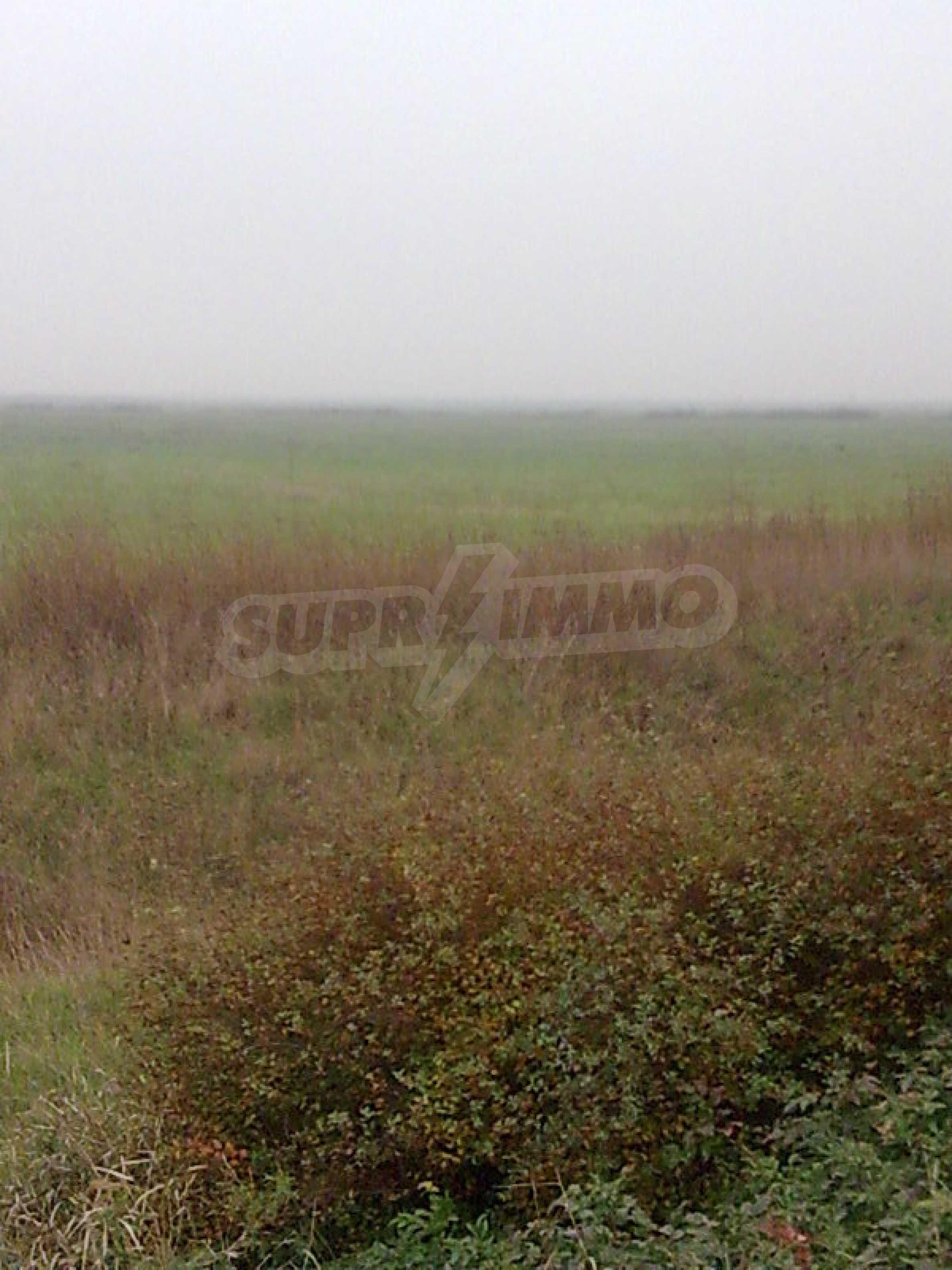 Umfangreiche landwirtschaftliche Flächen für Investitionen auf einer Asphaltstraße in der Nähe von Vidin 4
