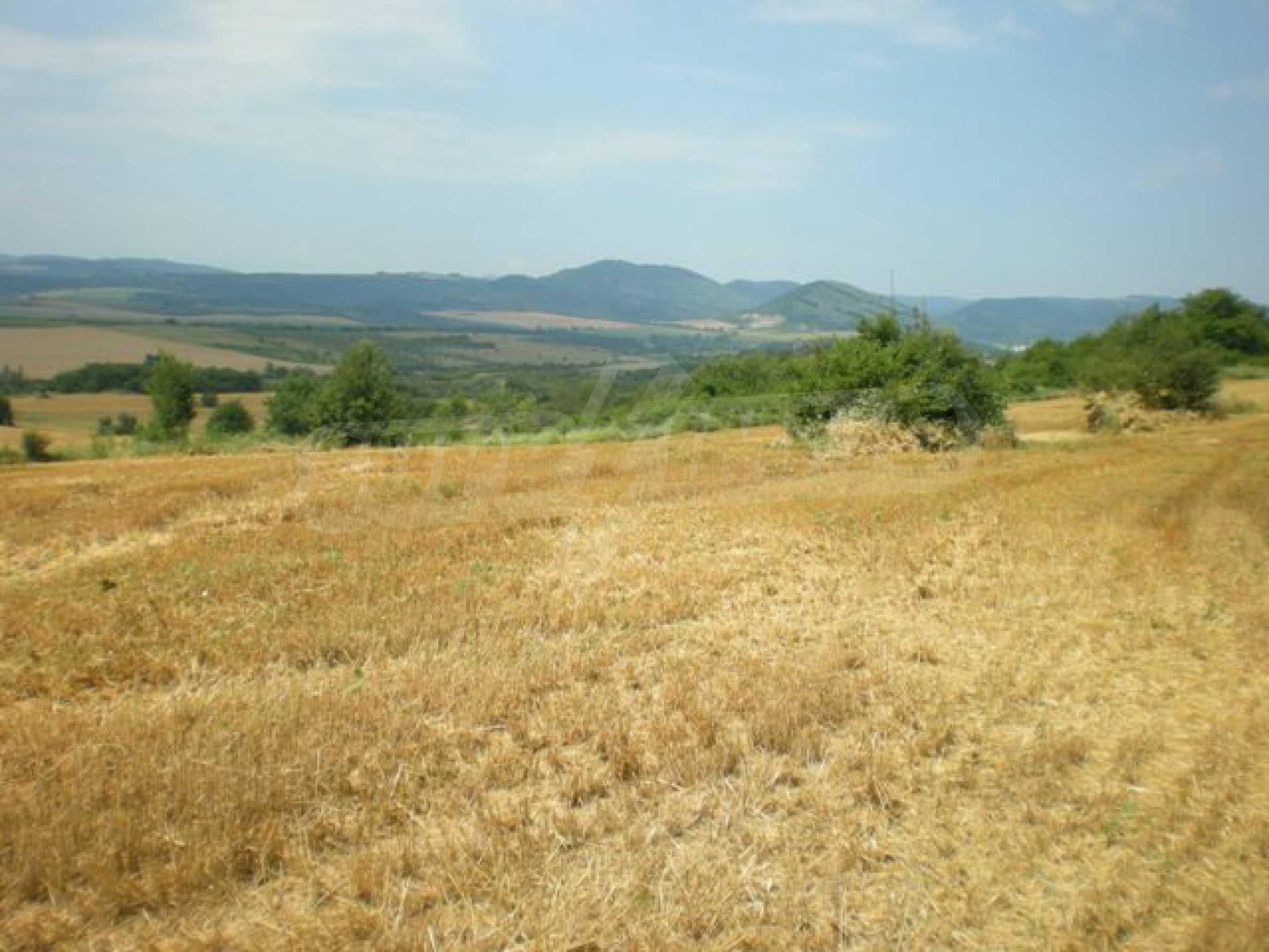 Парцели до регулация само на 3 км от Велико Търново  12