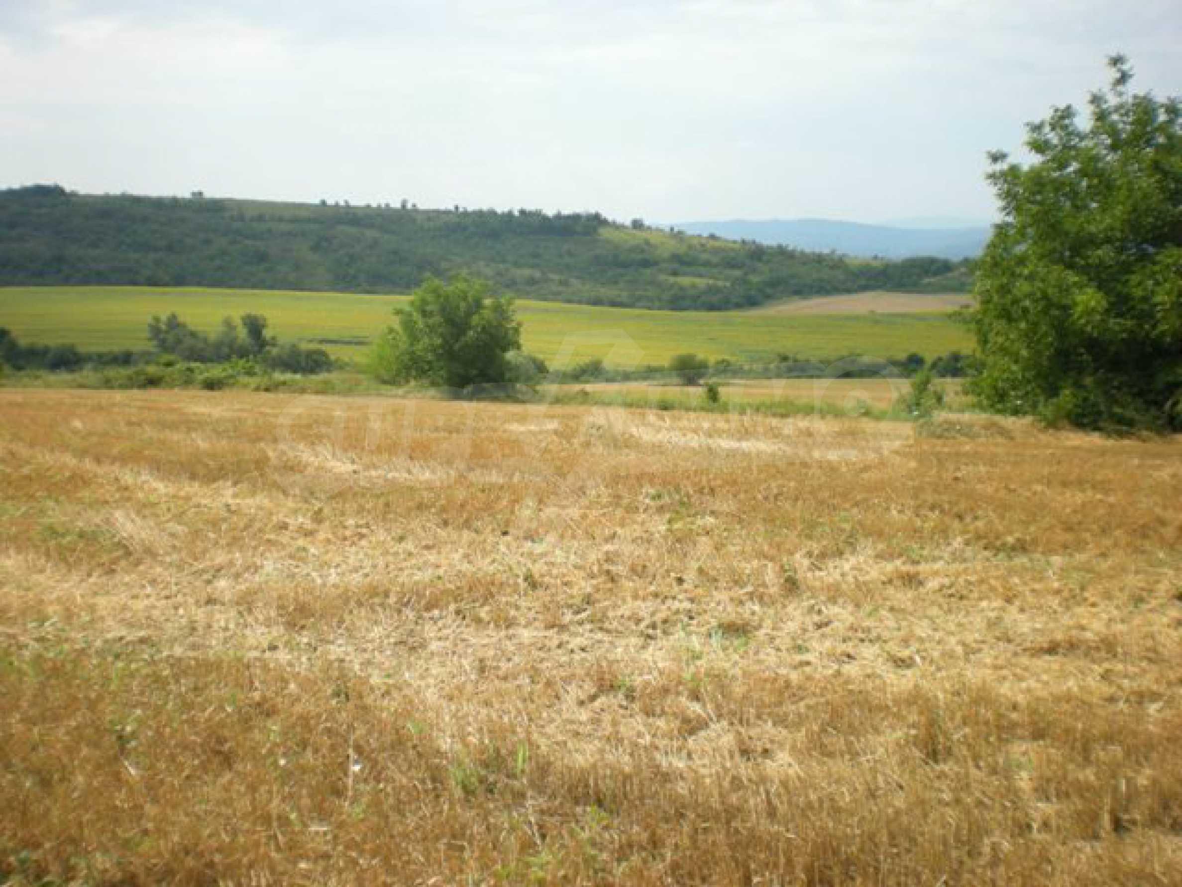 Парцели до регулация само на 3 км от Велико Търново  13