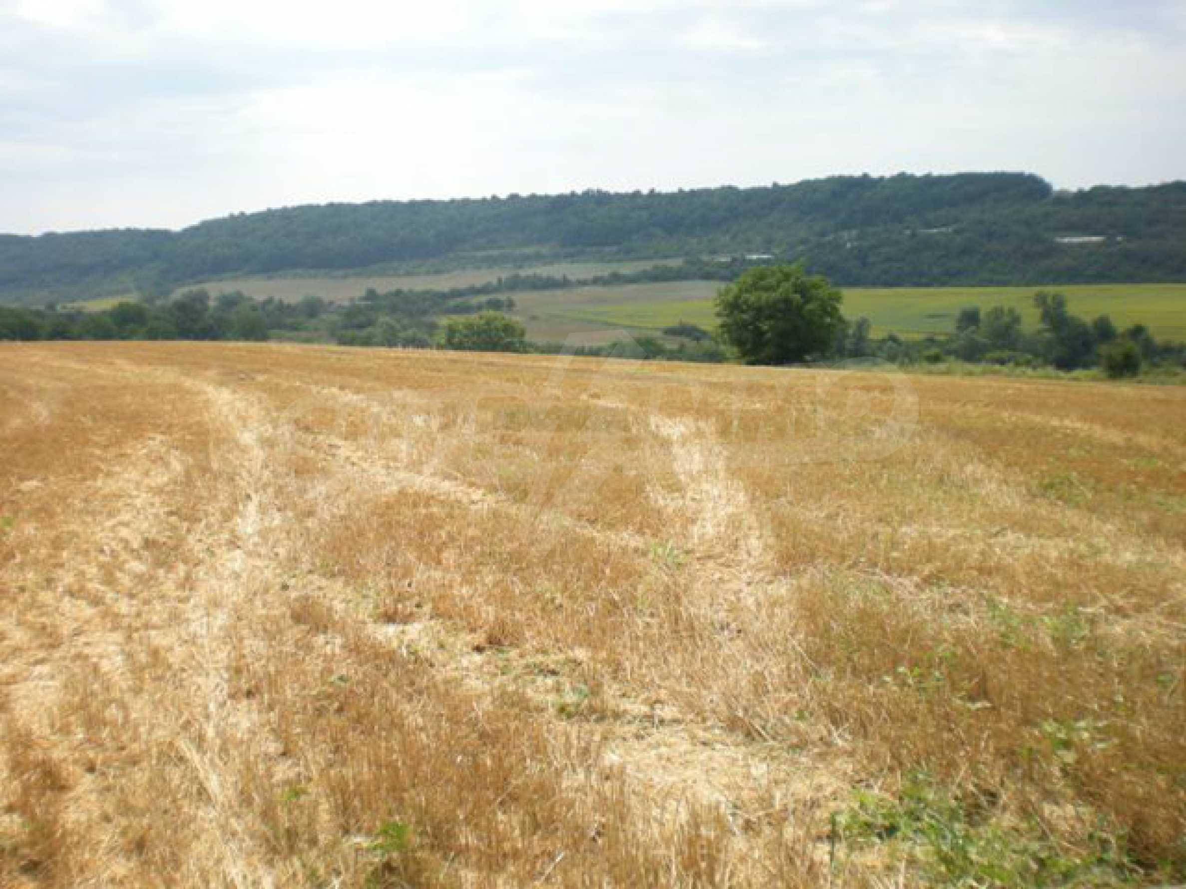 Парцели до регулация само на 3 км от Велико Търново  14