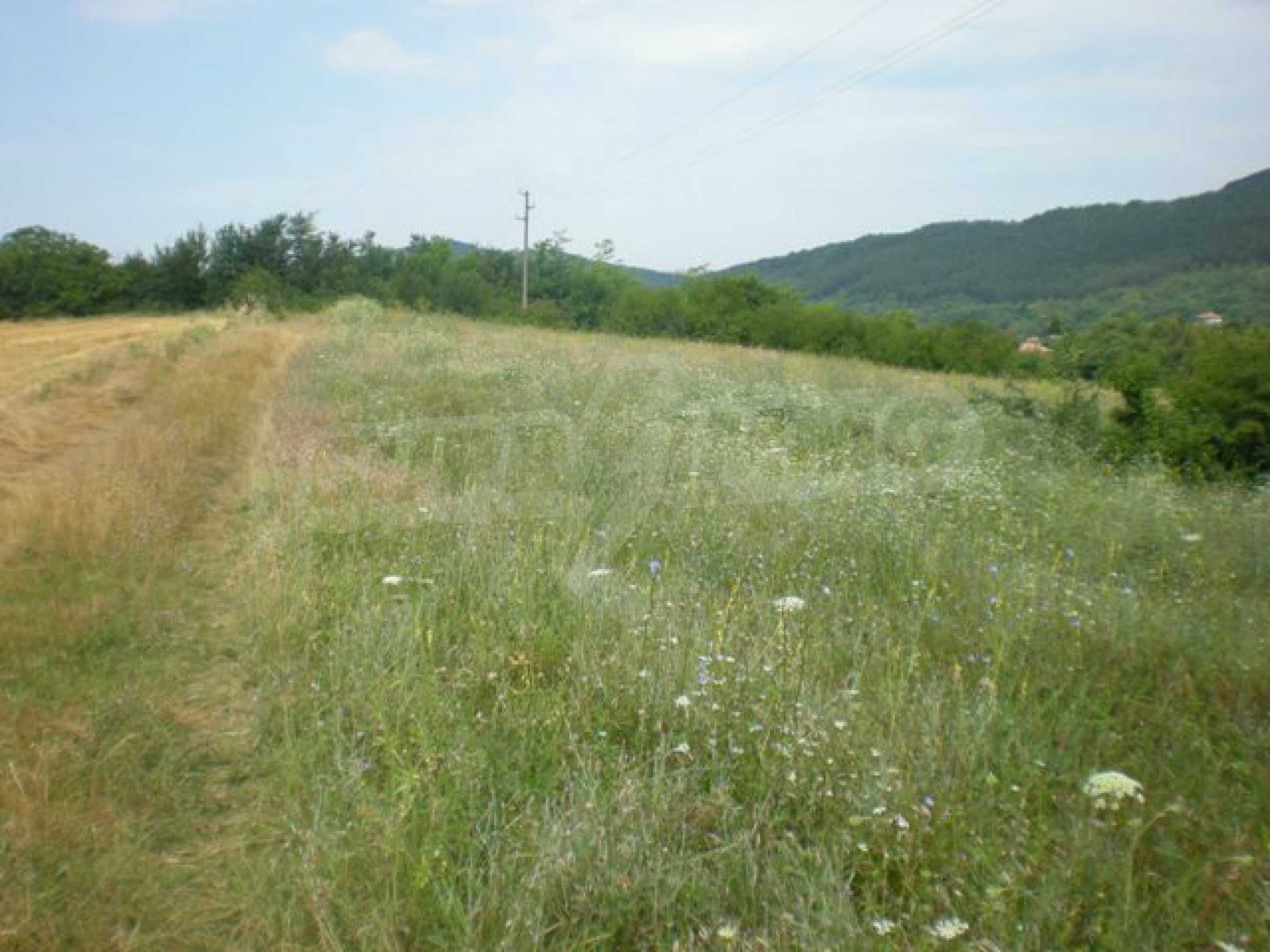 Парцели до регулация само на 3 км от Велико Търново  15