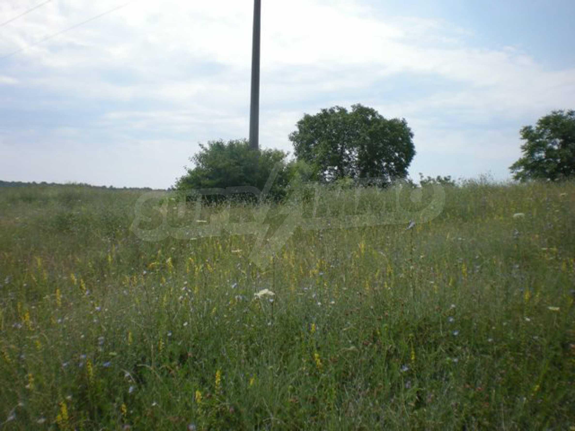 Парцели до регулация само на 3 км от Велико Търново  25