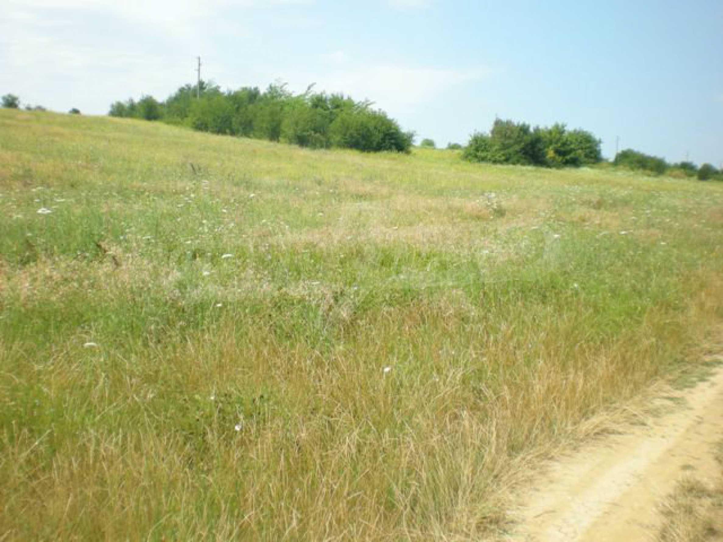 Парцели до регулация само на 3 км от Велико Търново  34