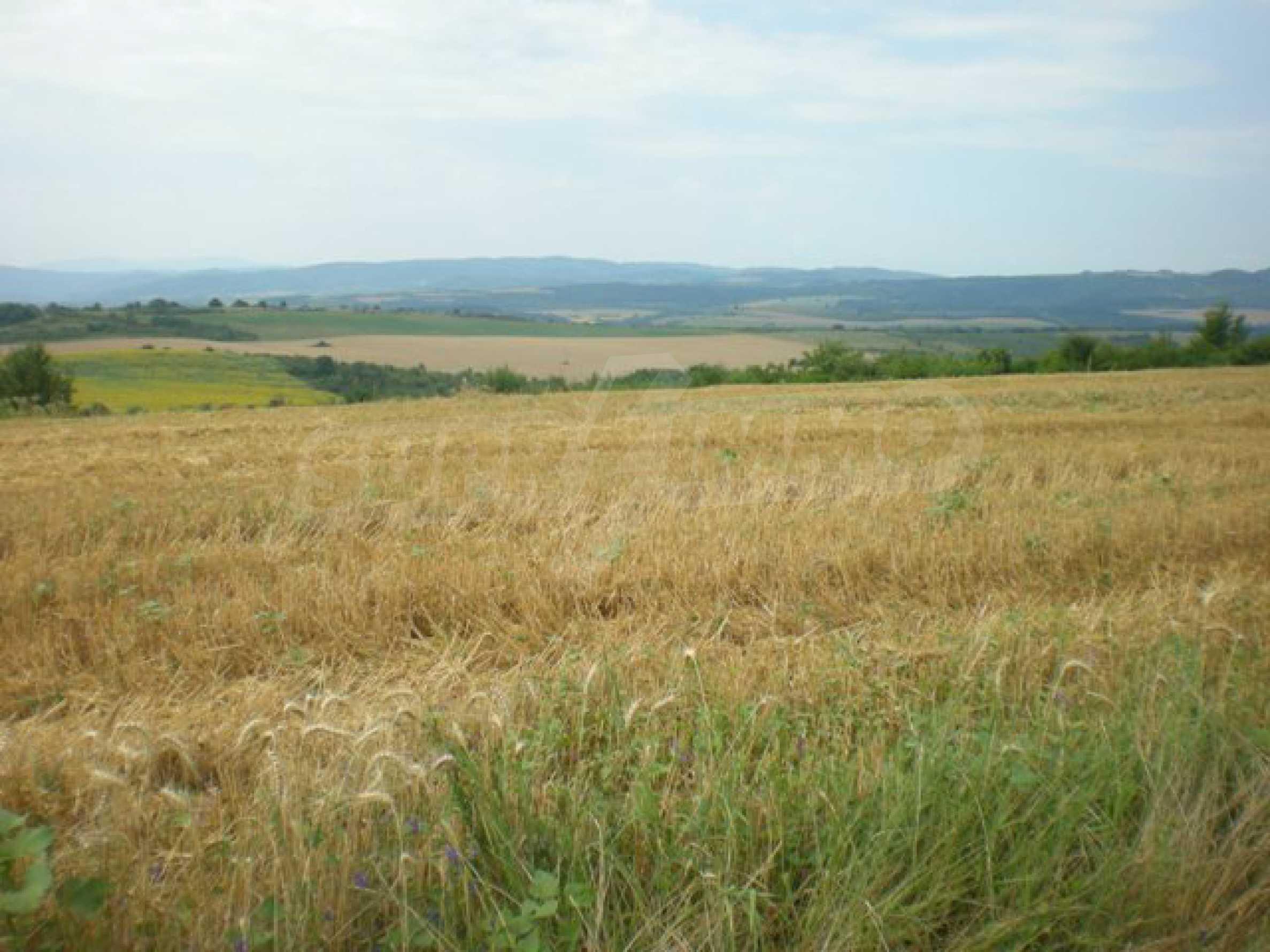 Парцели до регулация само на 3 км от Велико Търново  6