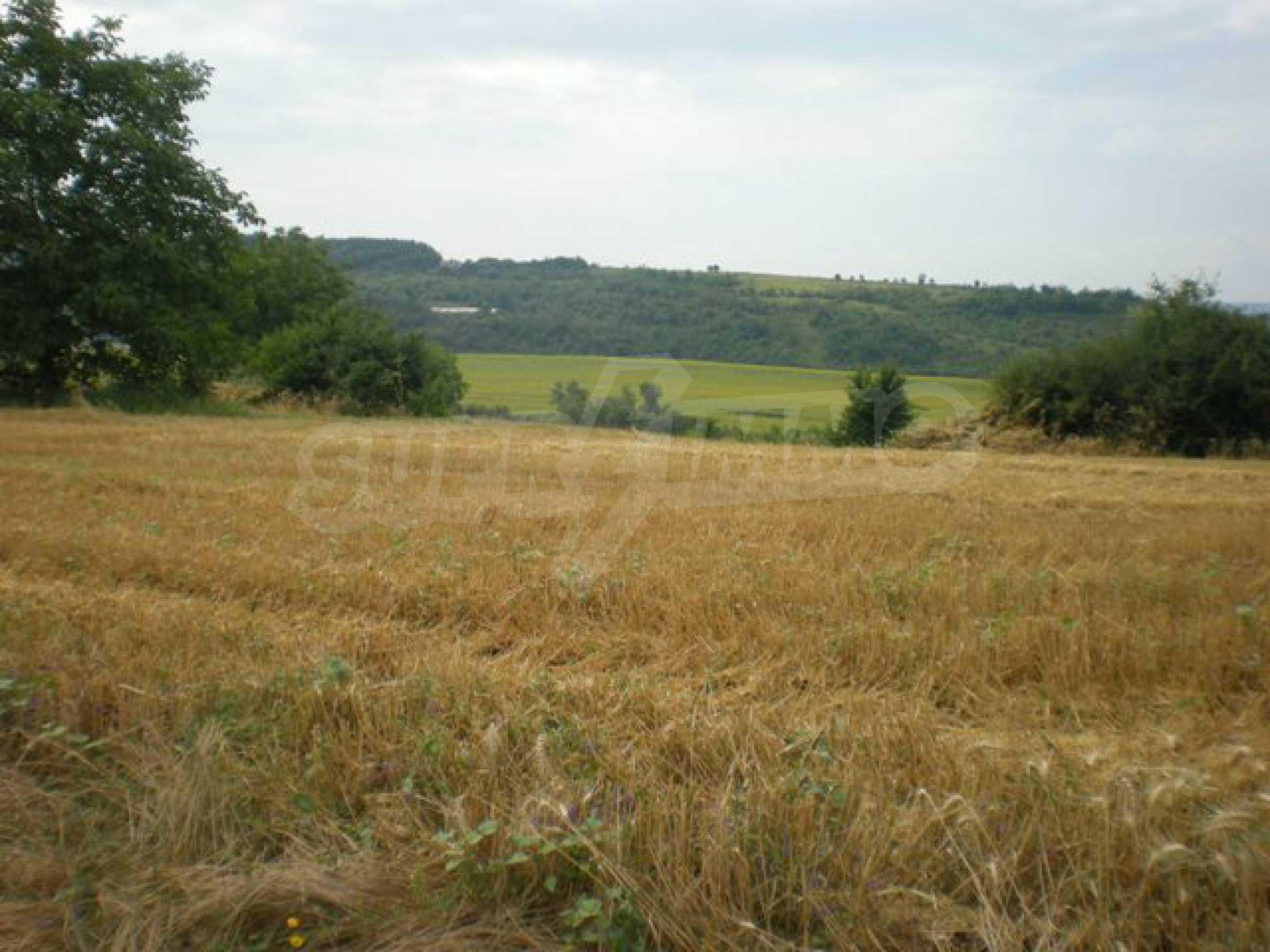Парцели до регулация само на 3 км от Велико Търново  7