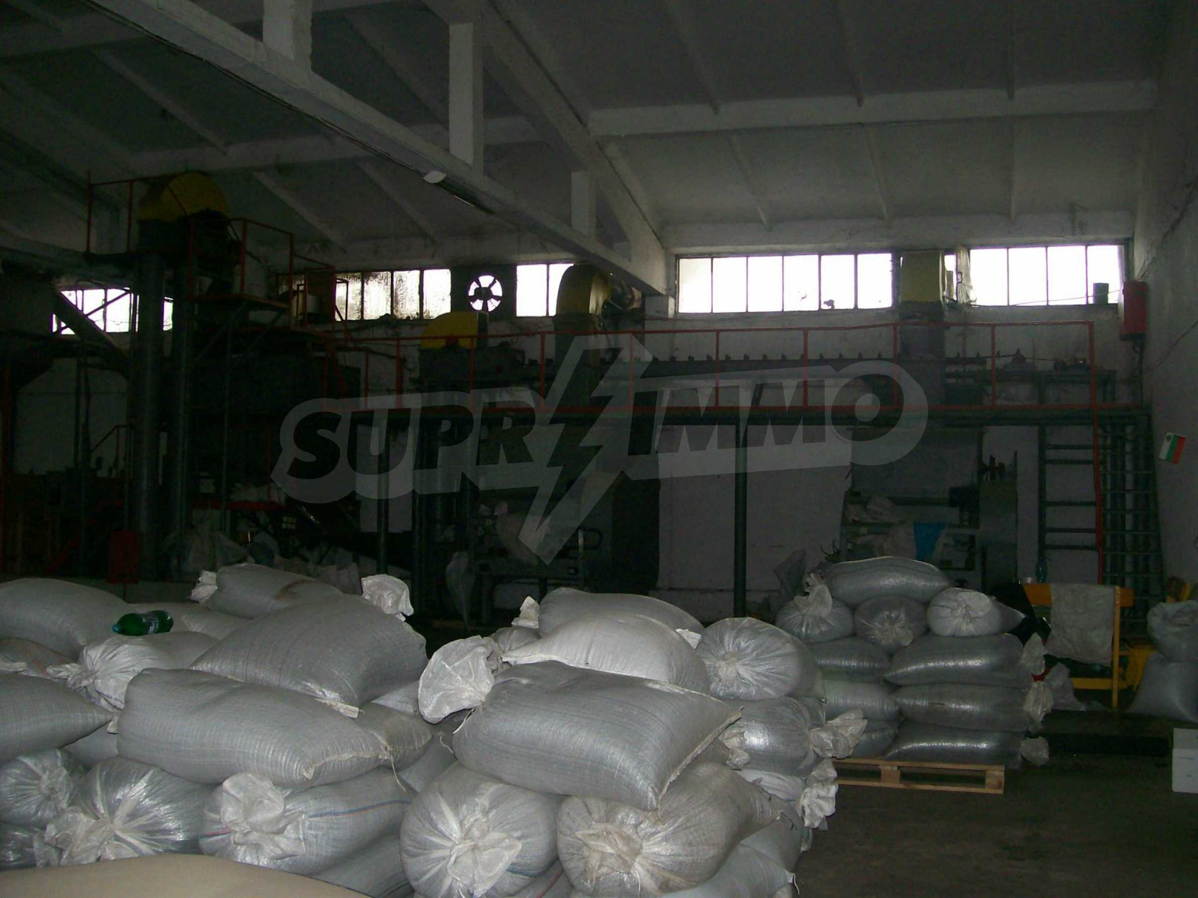 Property for industrial purposes in Vidin 4