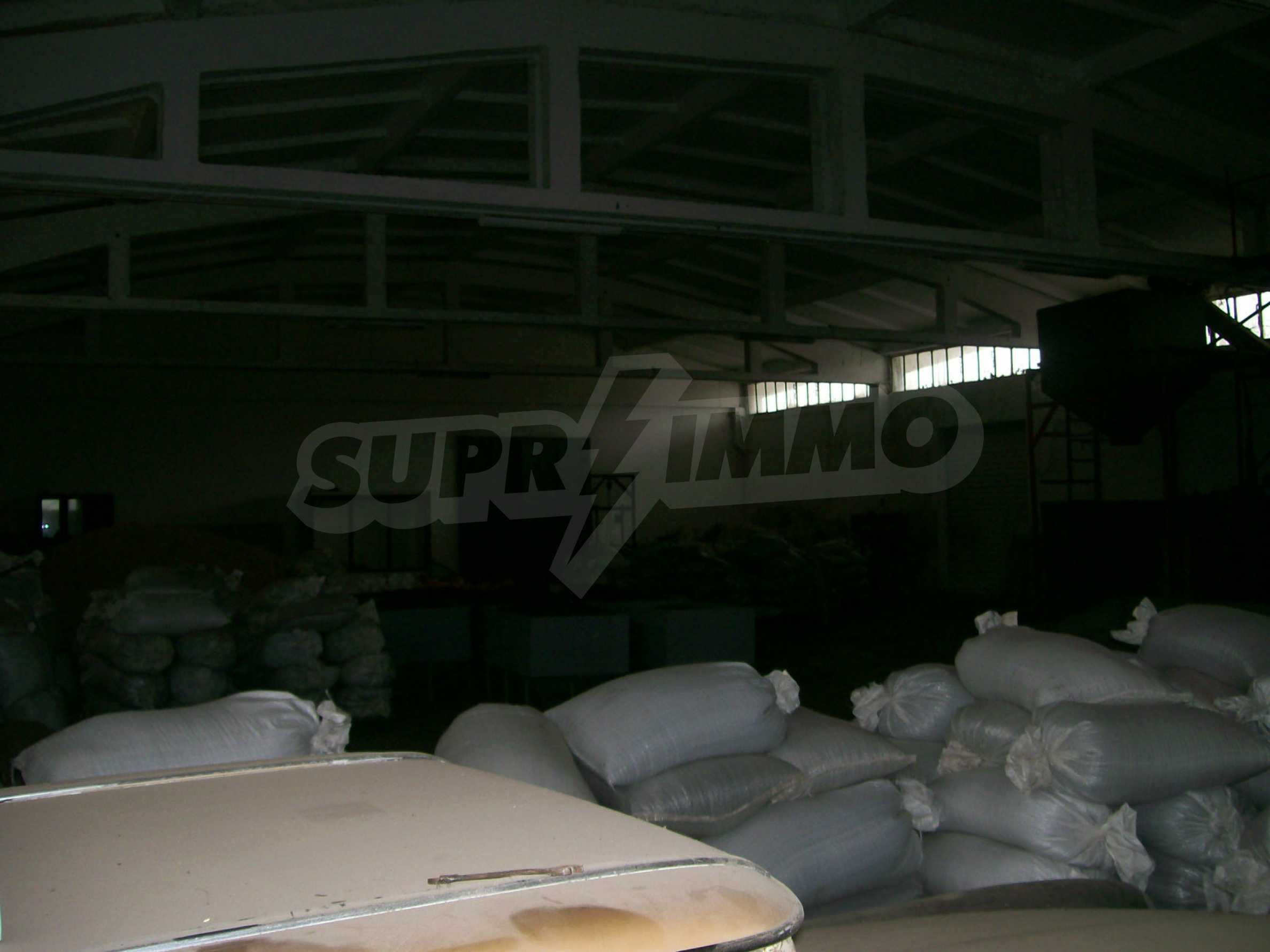 Property for industrial purposes in Vidin 7