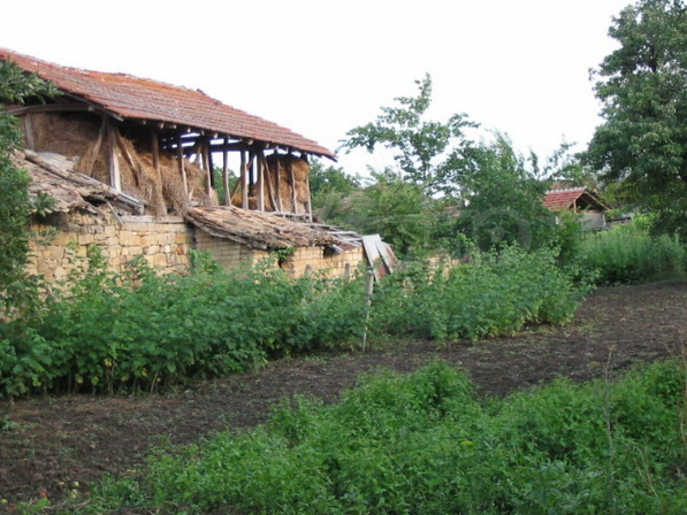 Къща в добро състояние до Велико Търново 11