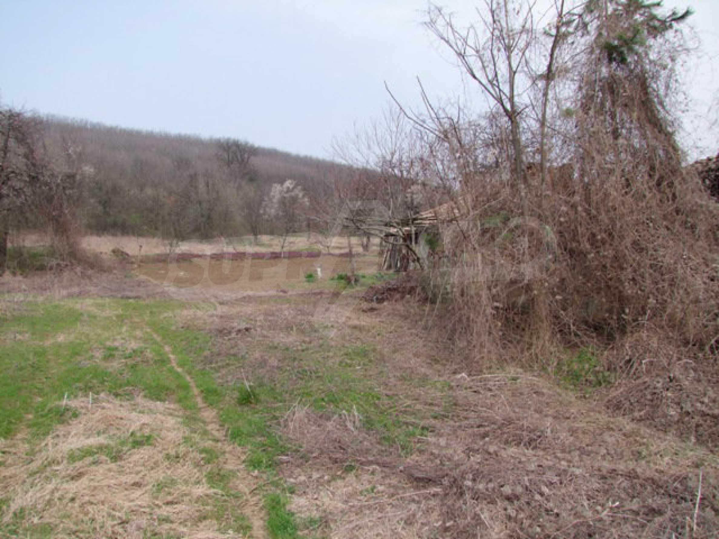 Regulated plot of land in a wonderful village near Veliko Tarnovo 15