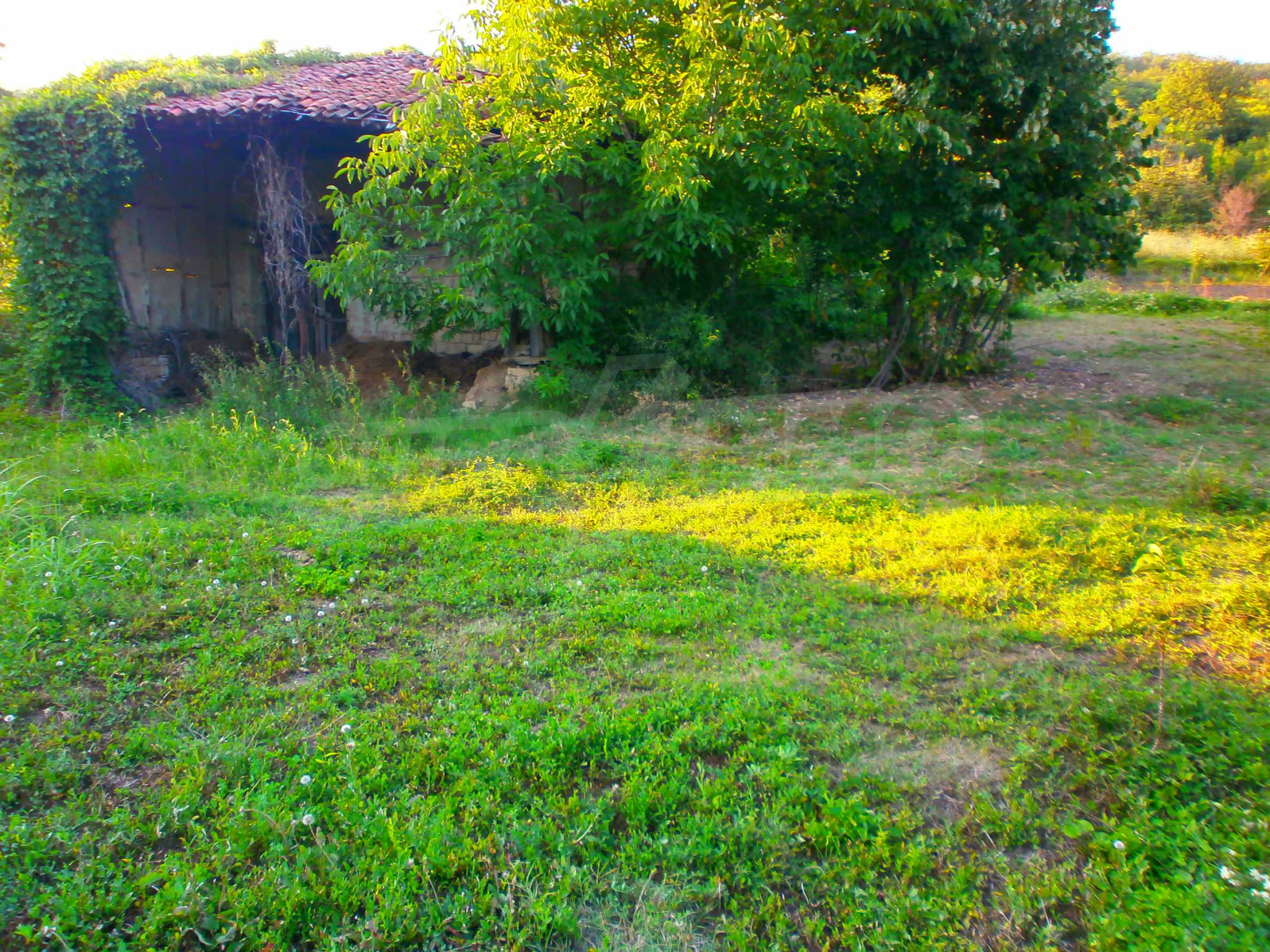 Regulated plot of land in a wonderful village near Veliko Tarnovo 2