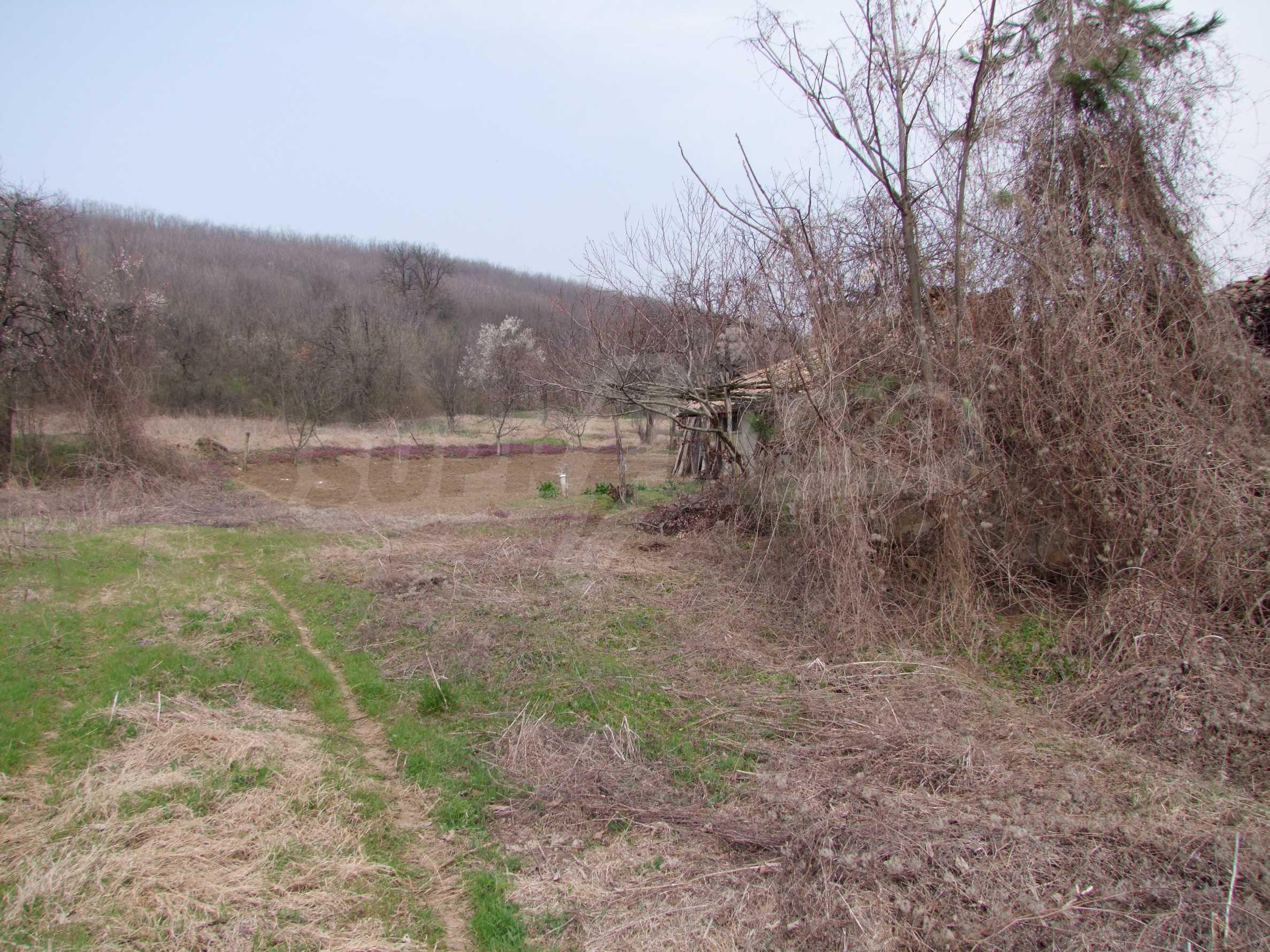 Regulated plot of land in a wonderful village near Veliko Tarnovo 5
