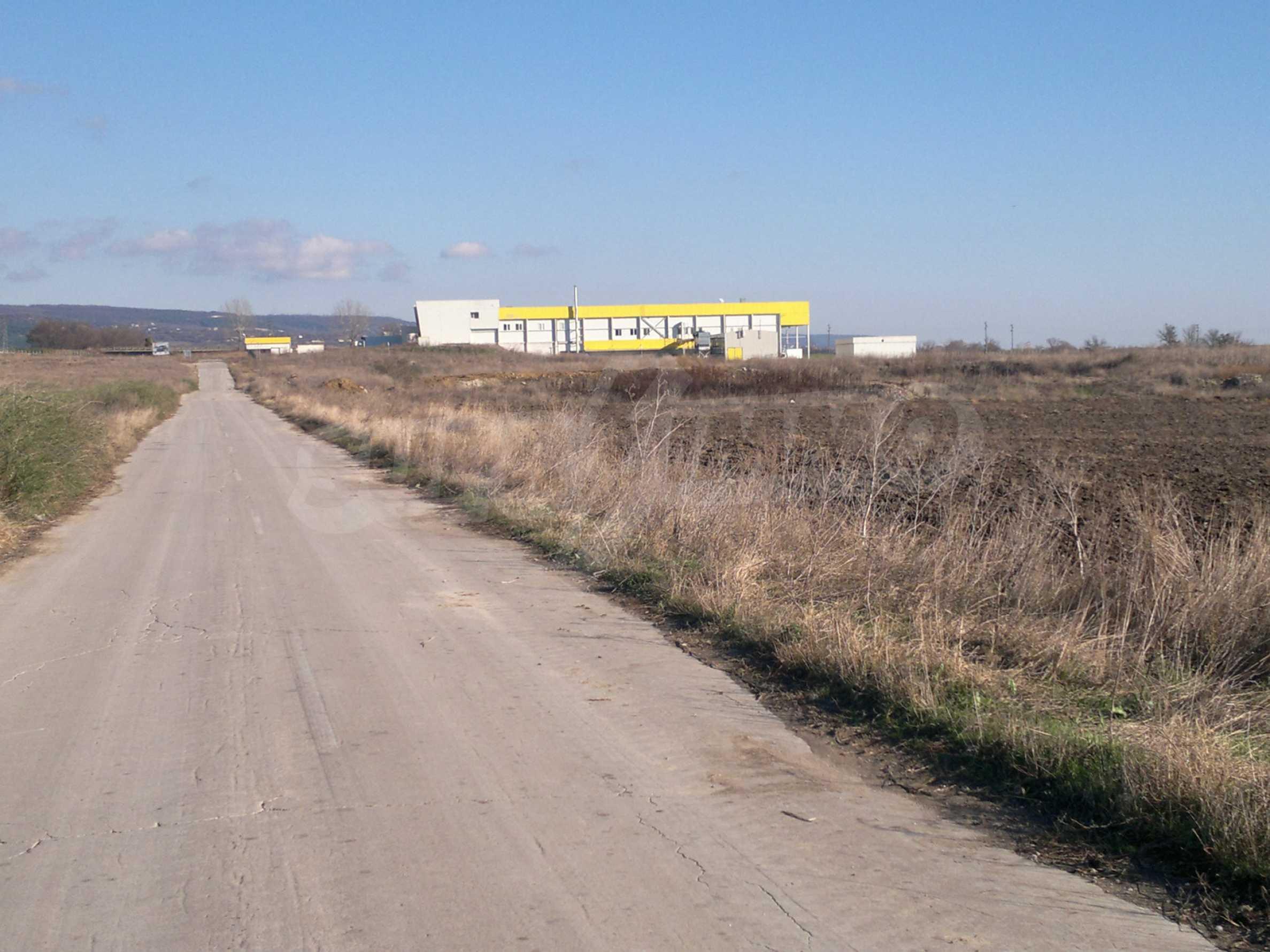 Ackerland in Ignatievo 6