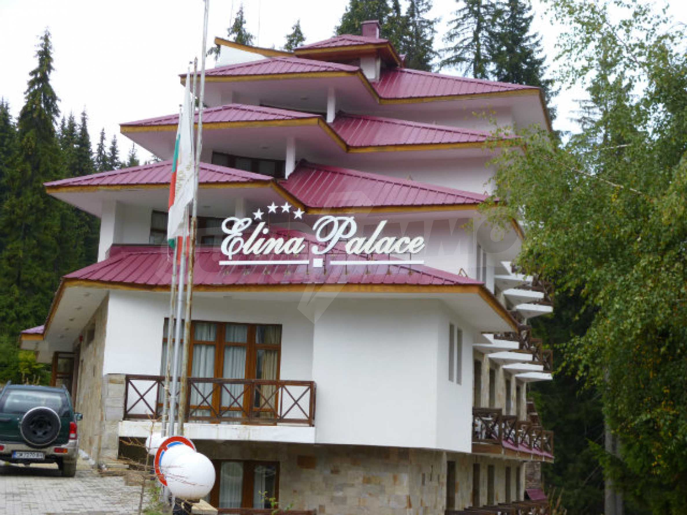 Cozy new studio in the gated complex Elina Palace in Pamporovo