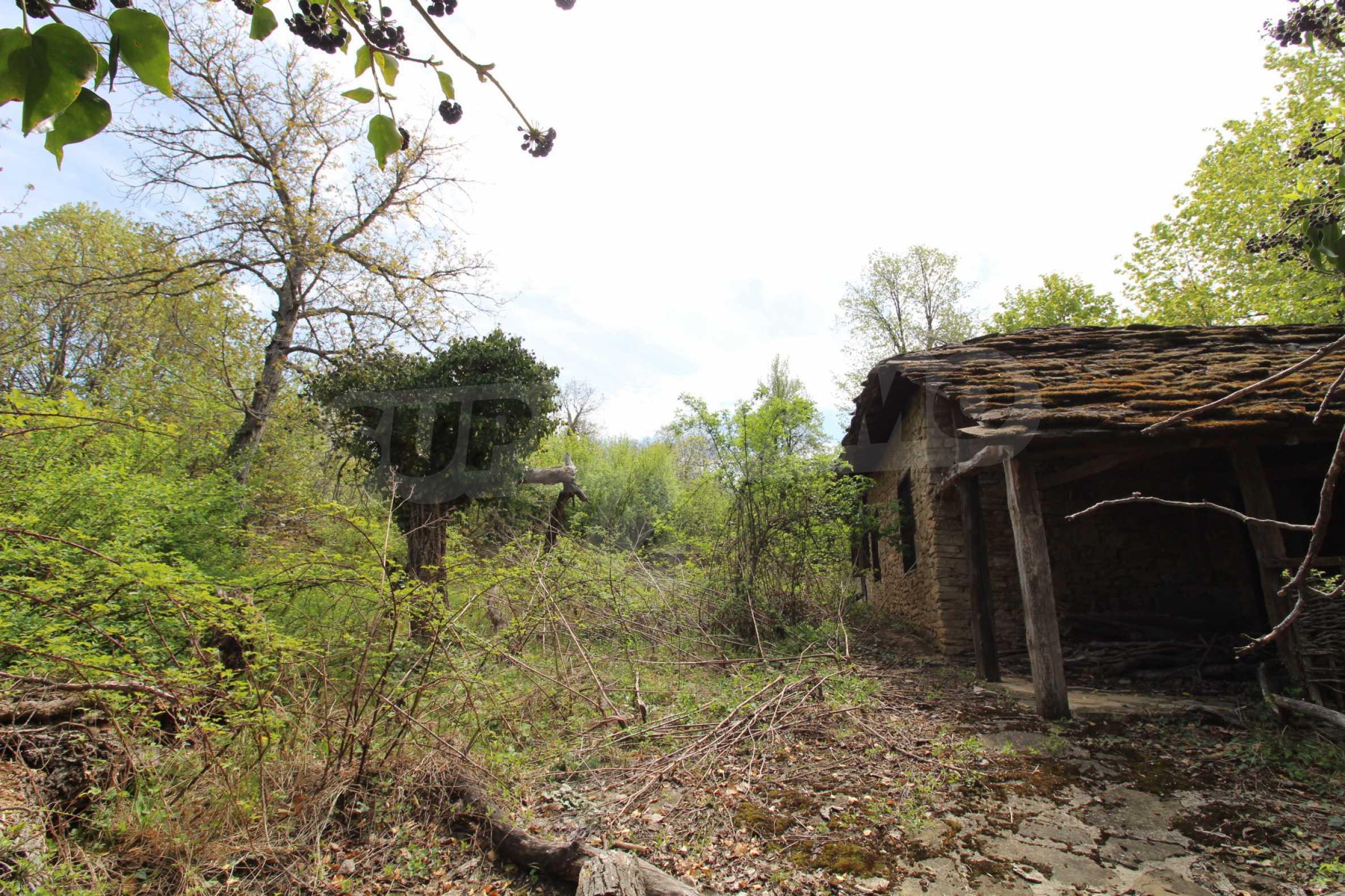 Традиционен имот в малко, китно село 4