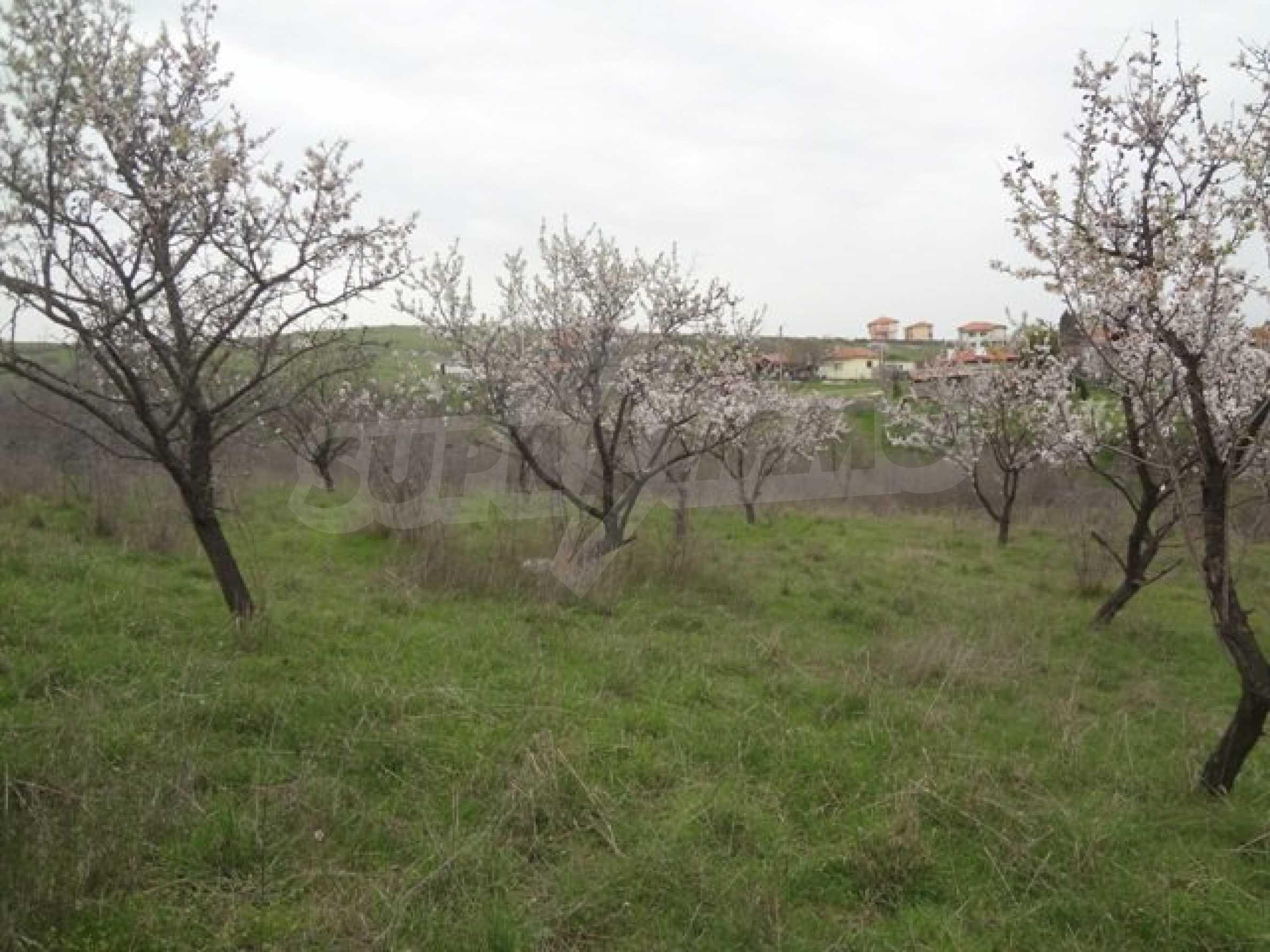 Hof im Dorf Laka mit Meerblick 3