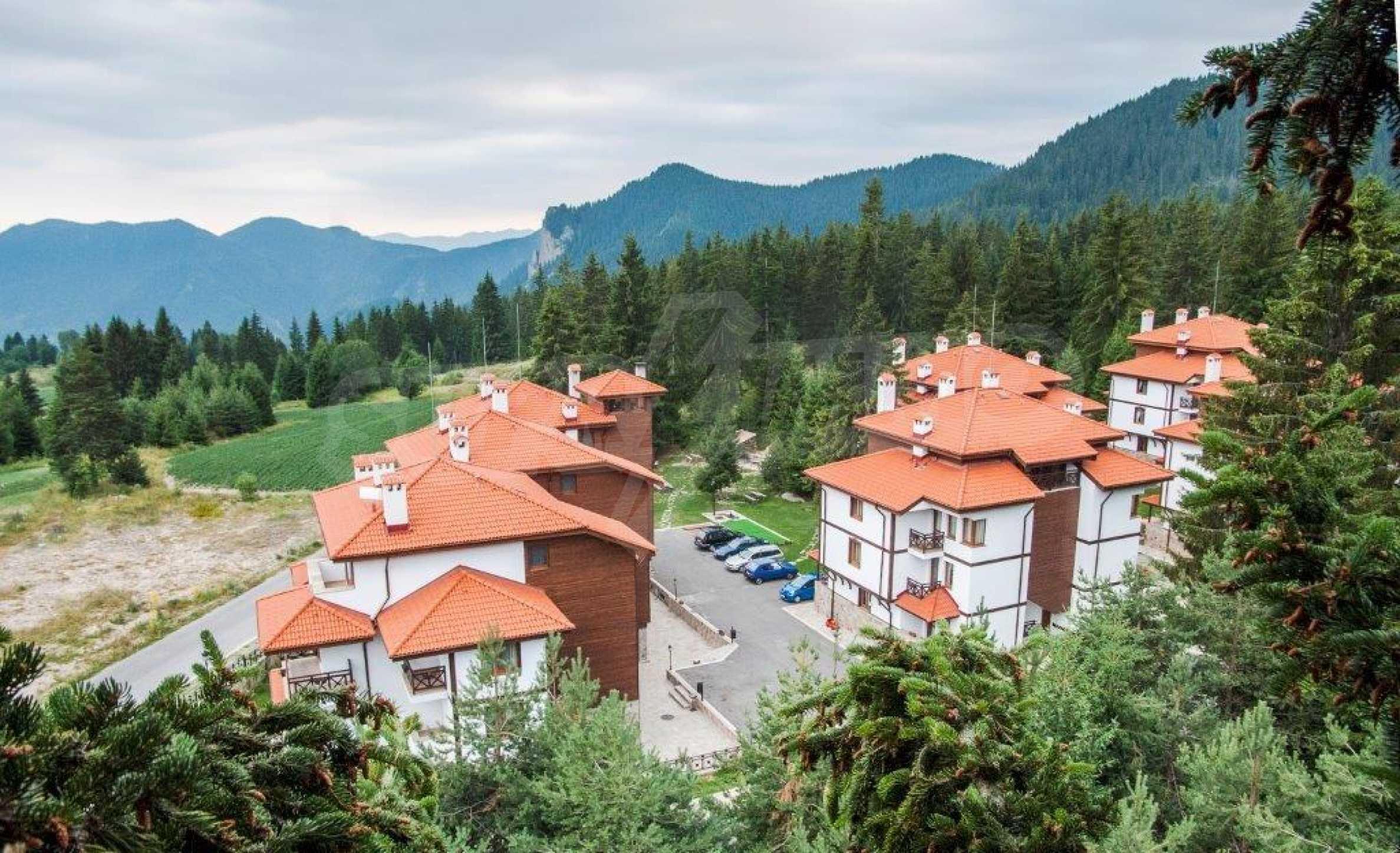 3-bedroom apartment in Pamporovo