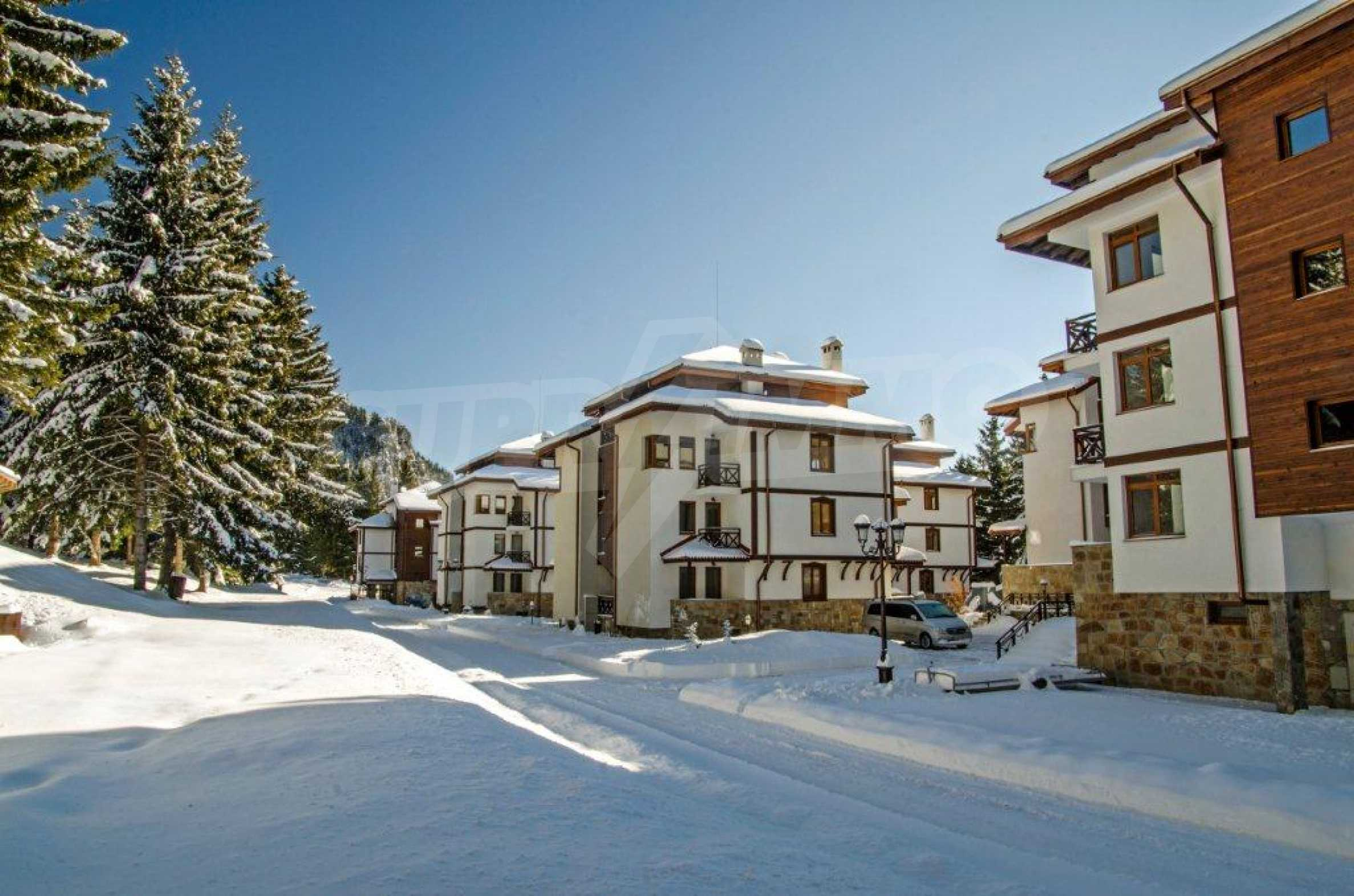 3-bedroom apartment in Pamporovo 11