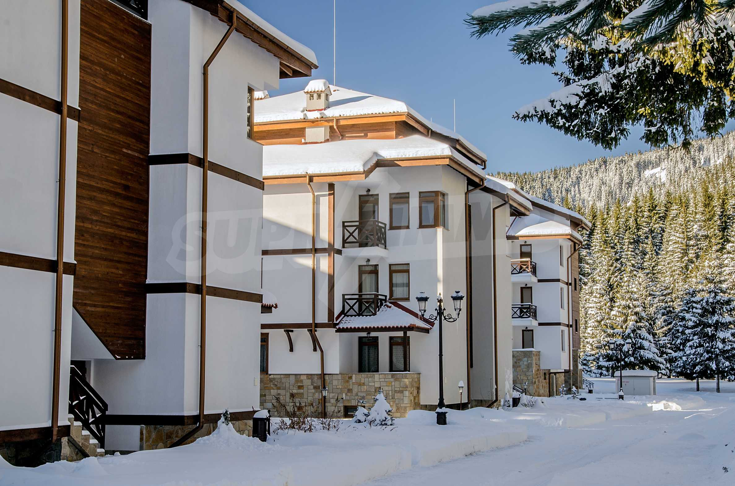 3-bedroom apartment in Pamporovo 15