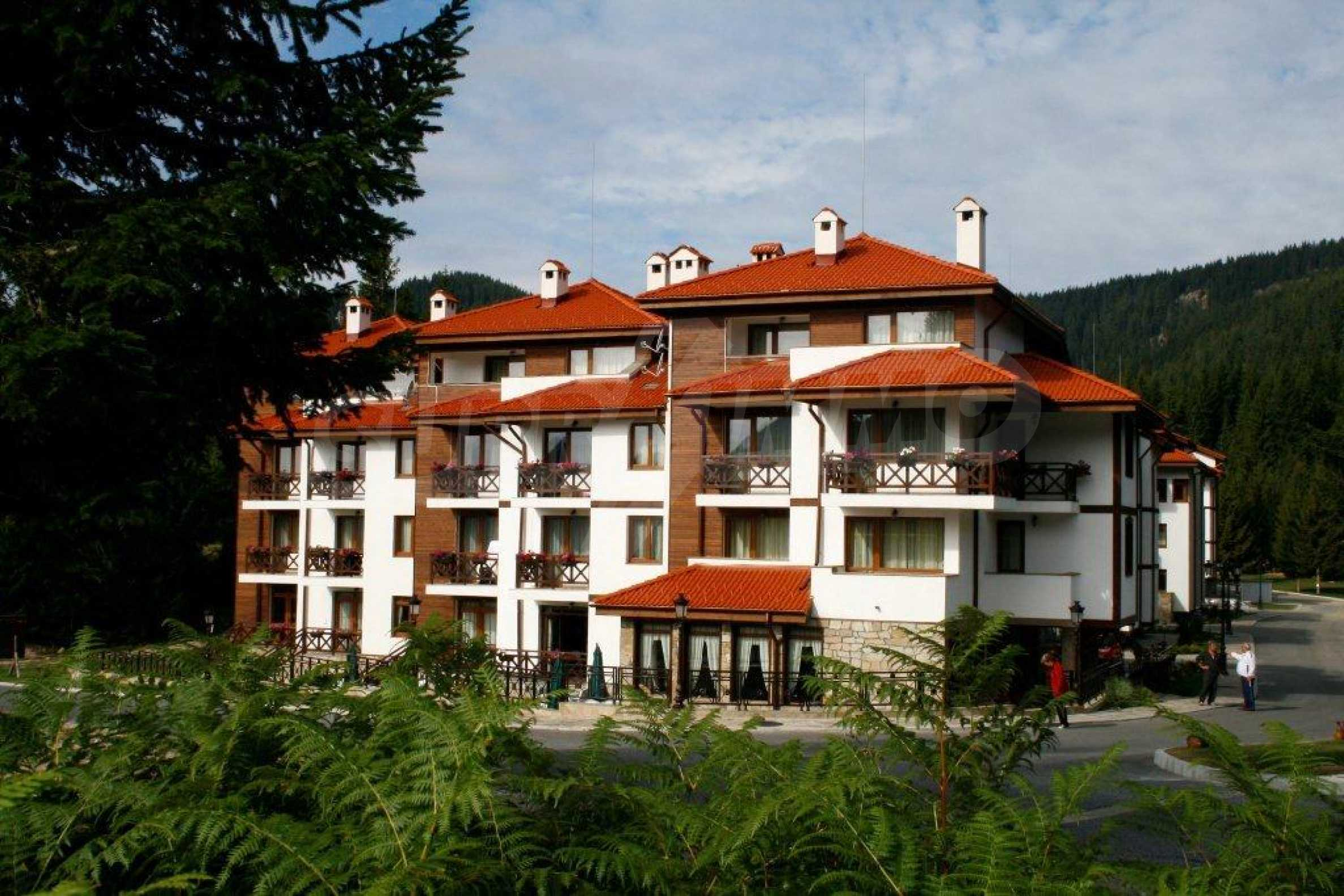 3-bedroom apartment in Pamporovo 1