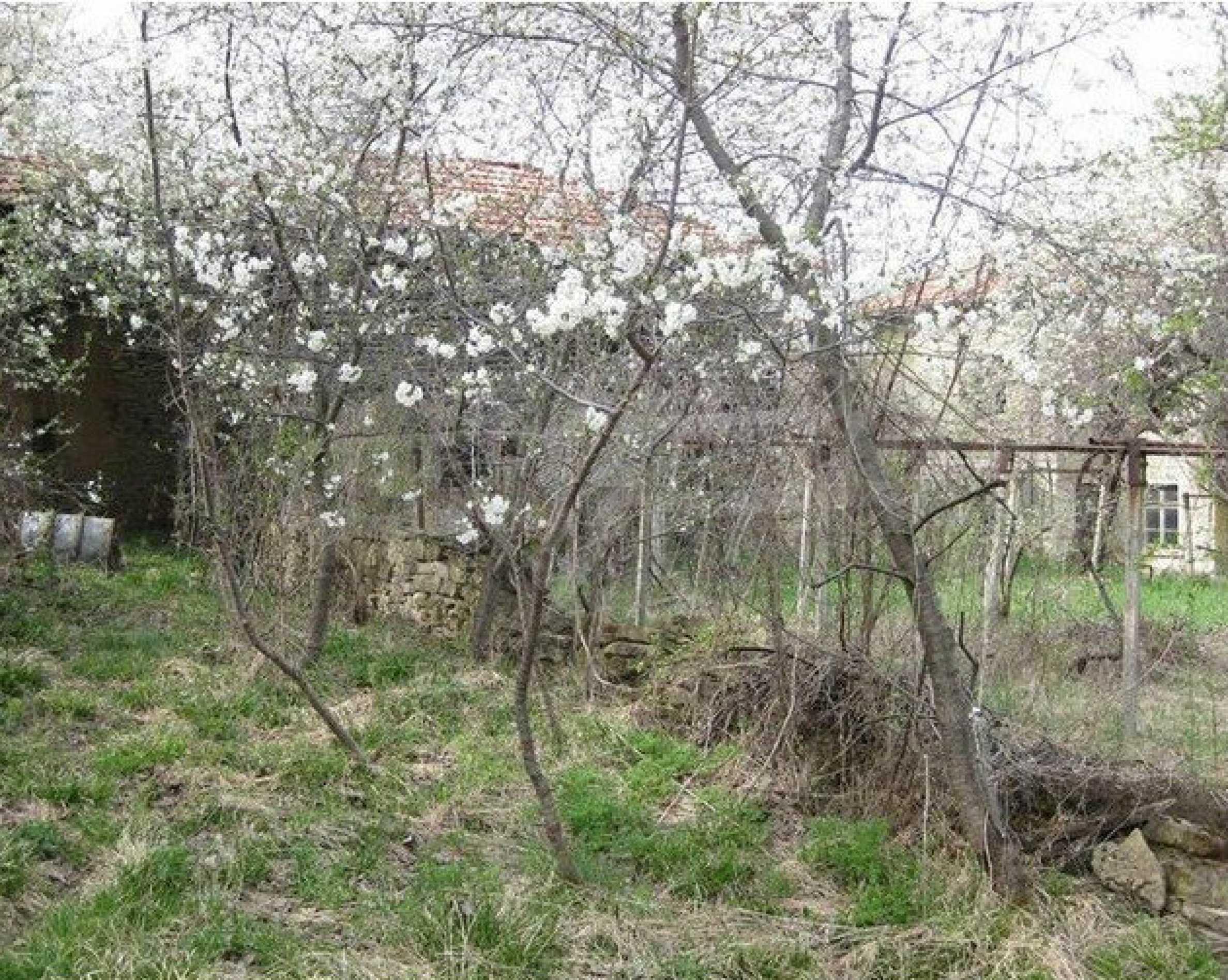 Двуетажна  къща с  голям двор в село на 30 км от В.Търново  4