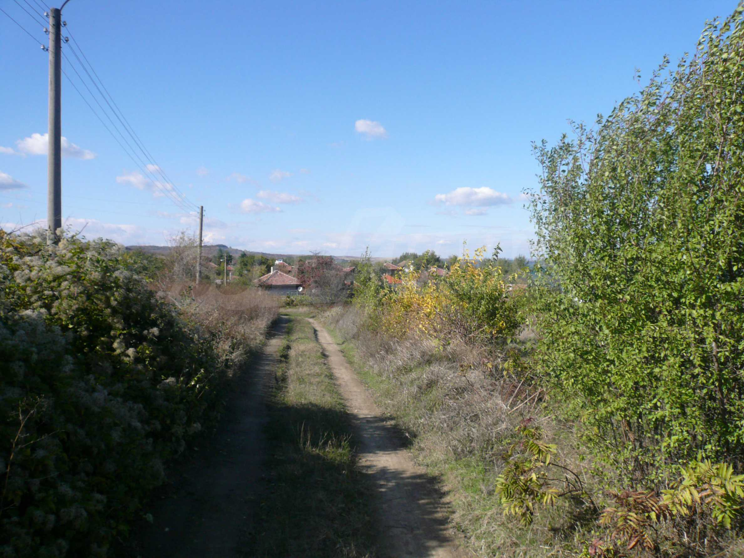 Regulated plot of land with vineyard at the banks of the Danube 7