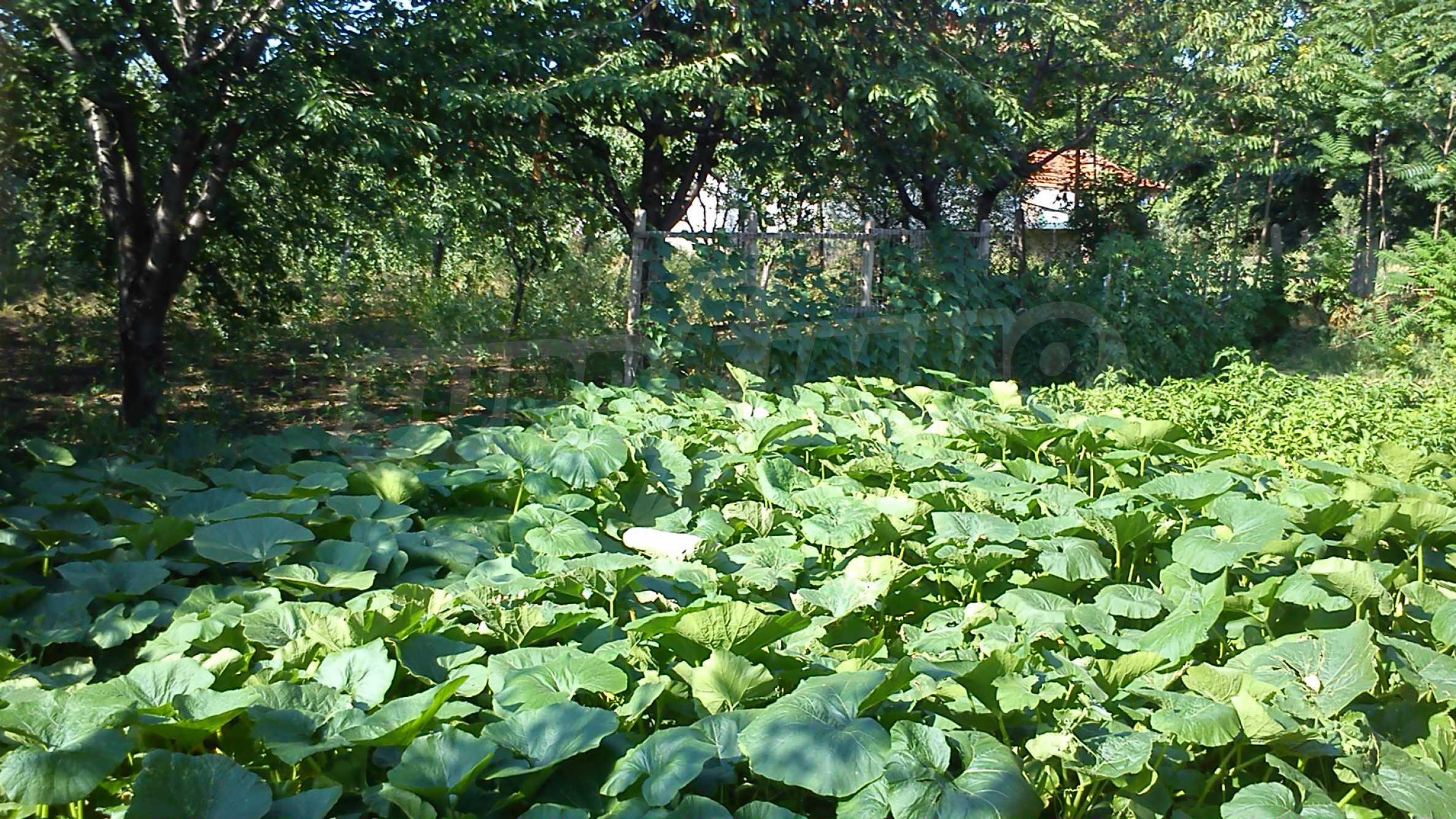 3-storey villa with garden in picturesque village near Vidin 18