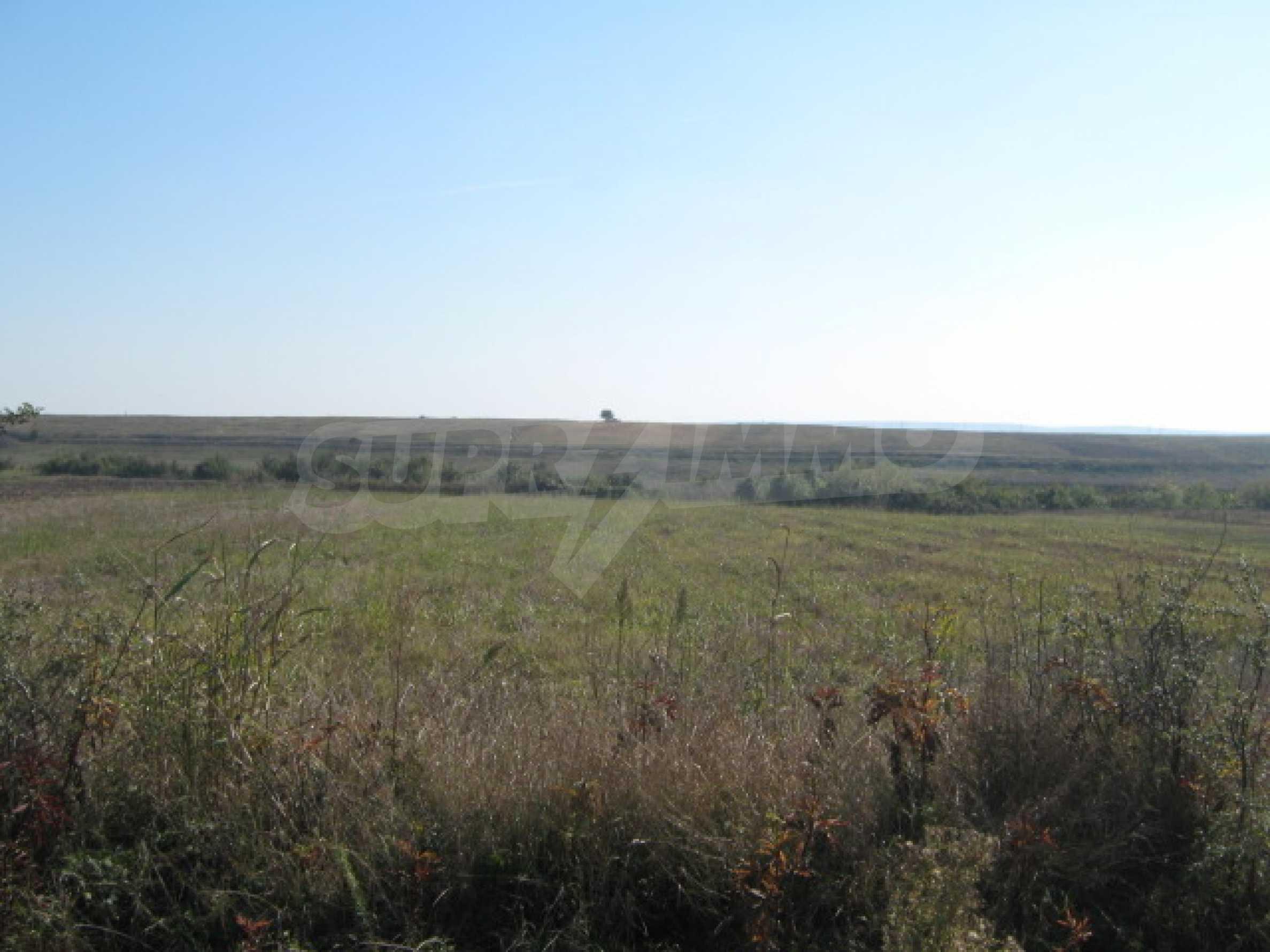 Сельскохозяйственная земля в г. Видин