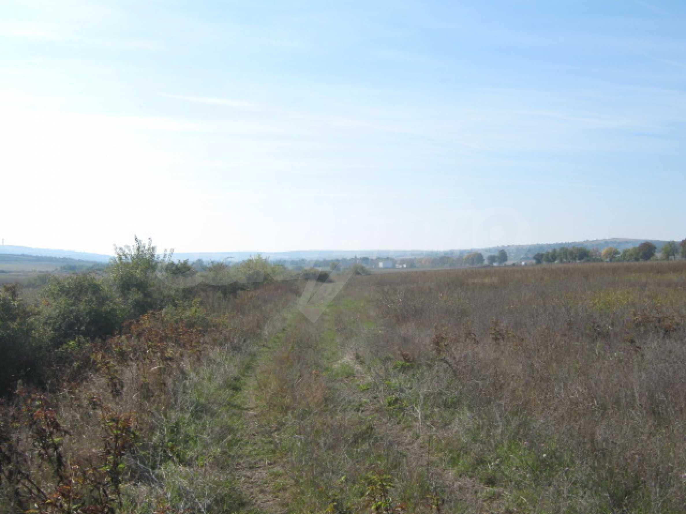 Сельскохозяйственная земля в г. Видин 1