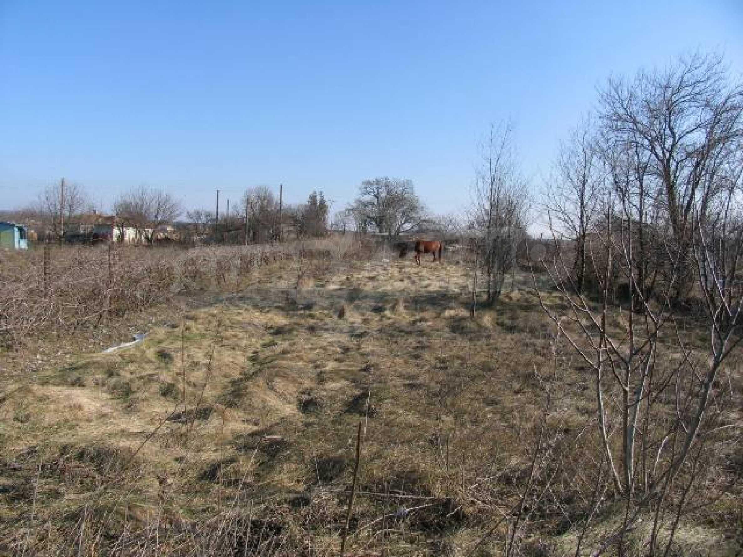 Land for sale in Slaveevo village - 15 km away from Albena seaside resort 9