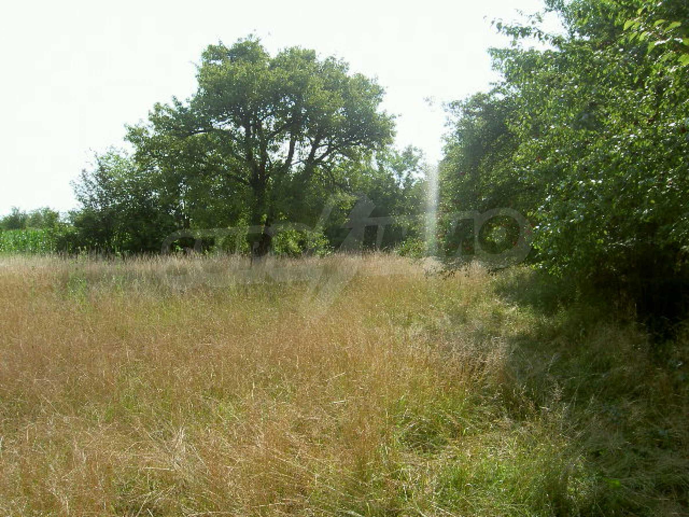 Земельный участок рядом с г. Велико Тырново 2