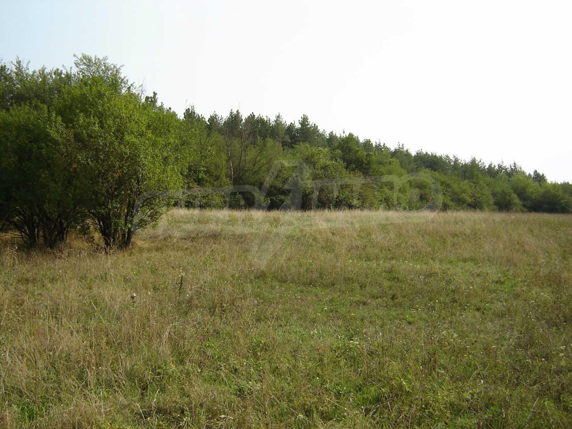 Grundstück mit Blick auf die Hauptstraße Sofia - Varna, 17 km von Veliko Tarnovo entfernt 1