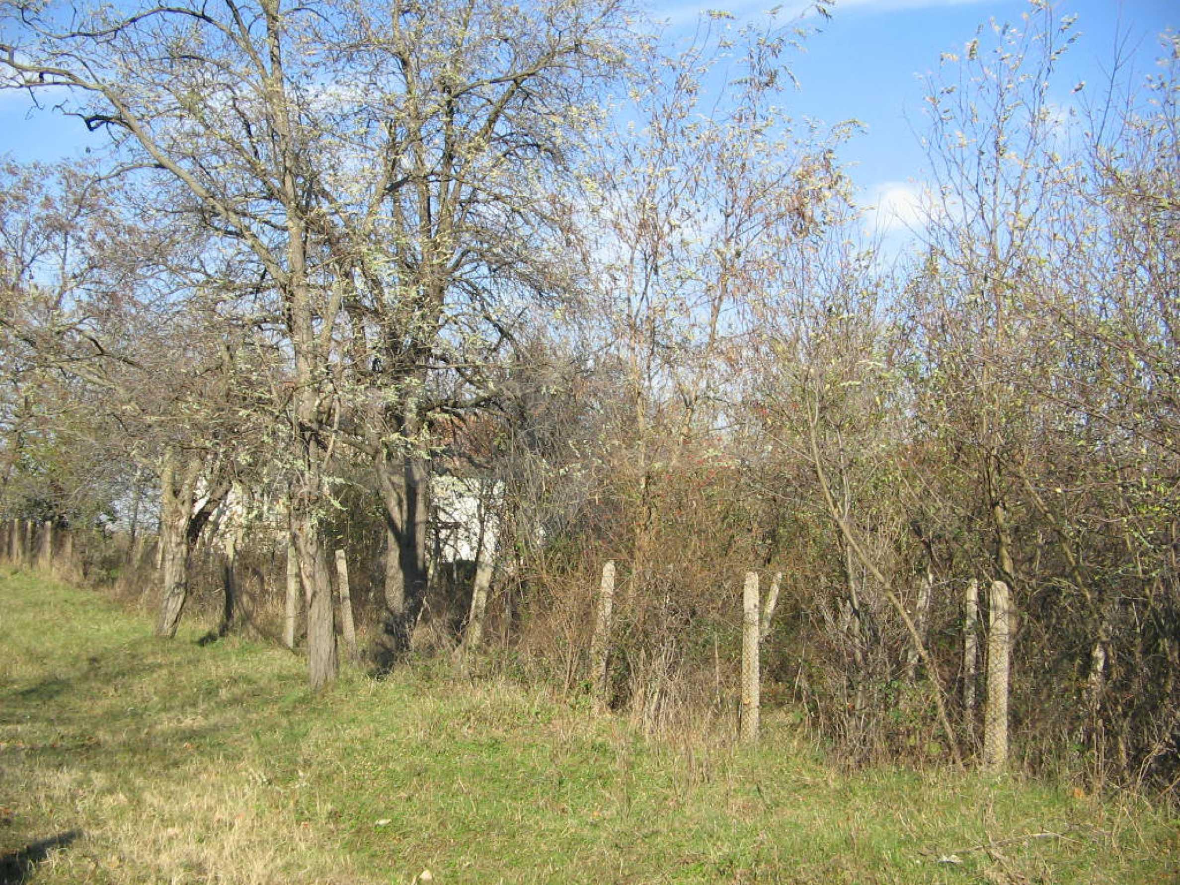 Einfamilienhaus mit Hof in der Nähe von Montana 14