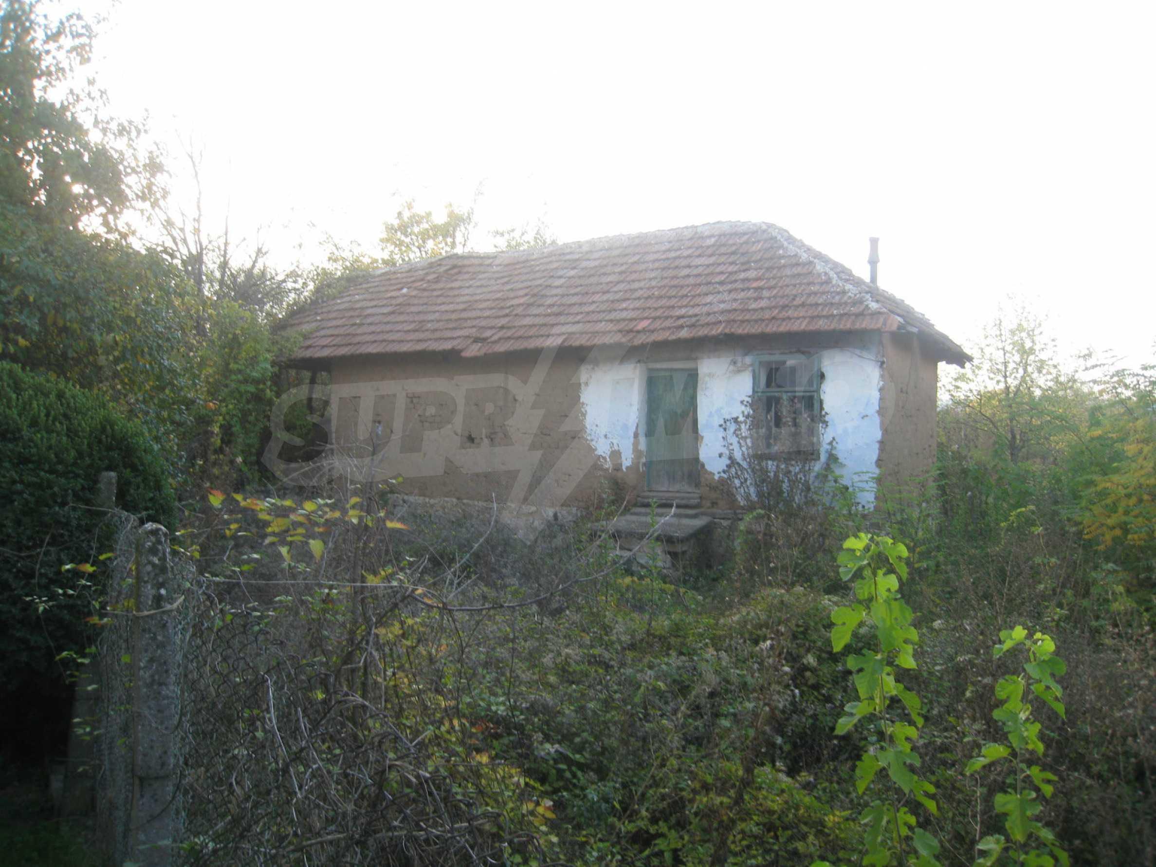 One-storey house with big yard near Montana 43