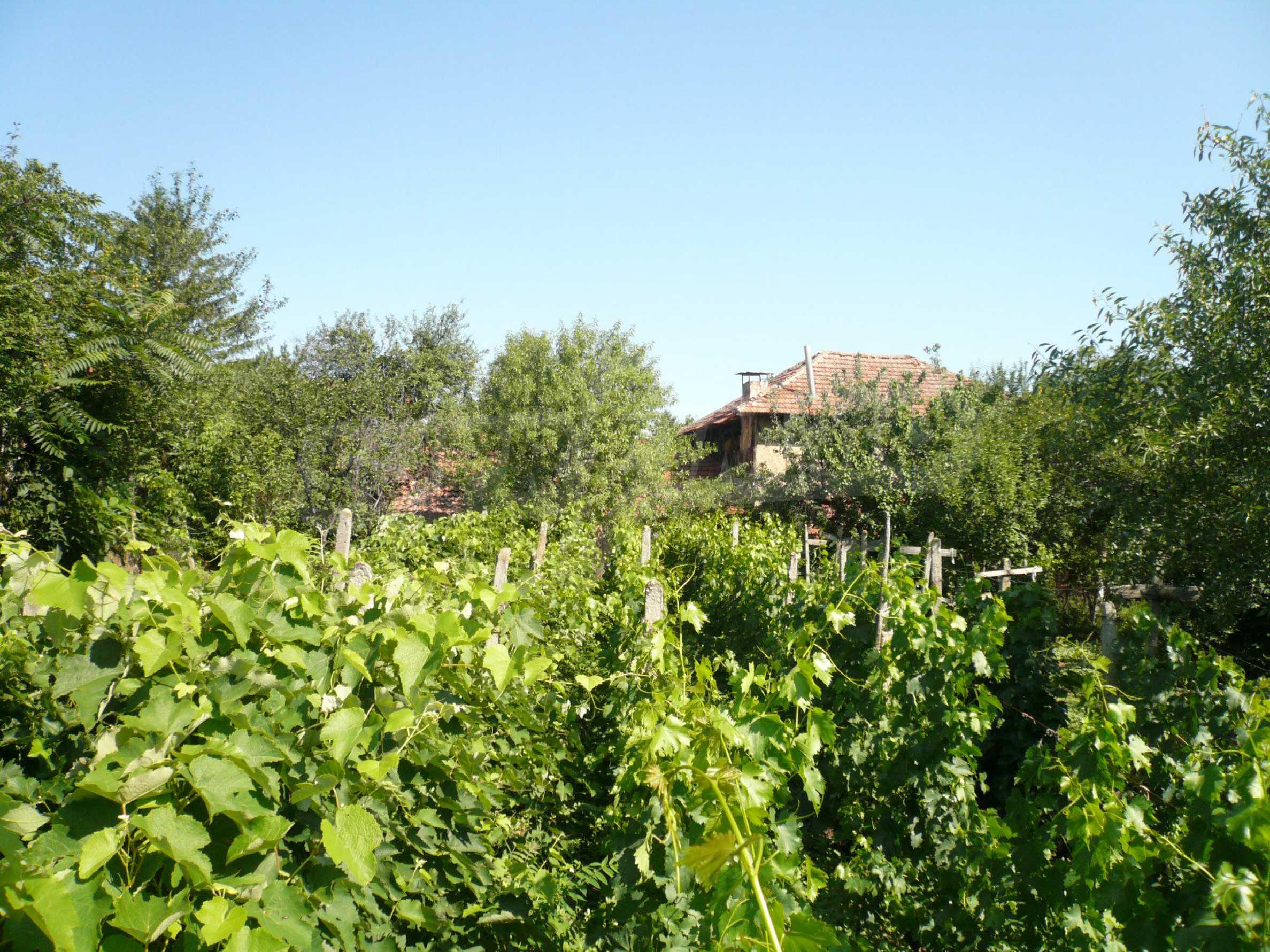 Ländliche Häuser mit einem Garten 12 km von Vidin entfernt 15