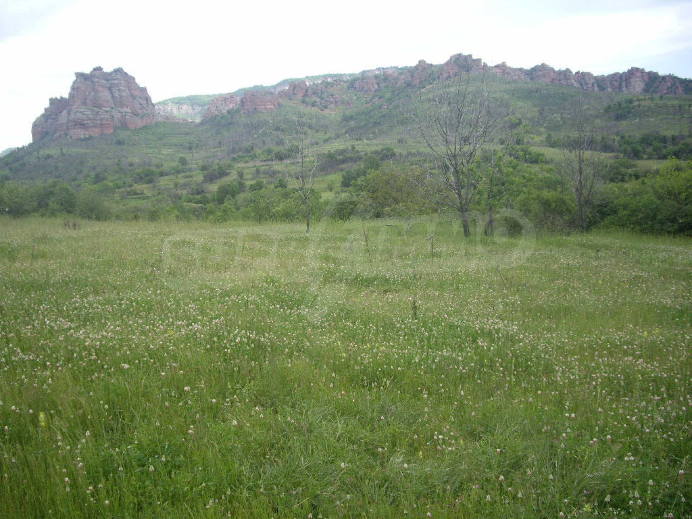 Großes unreguliertes Grundstück 50 km von Vidin entfernt 9
