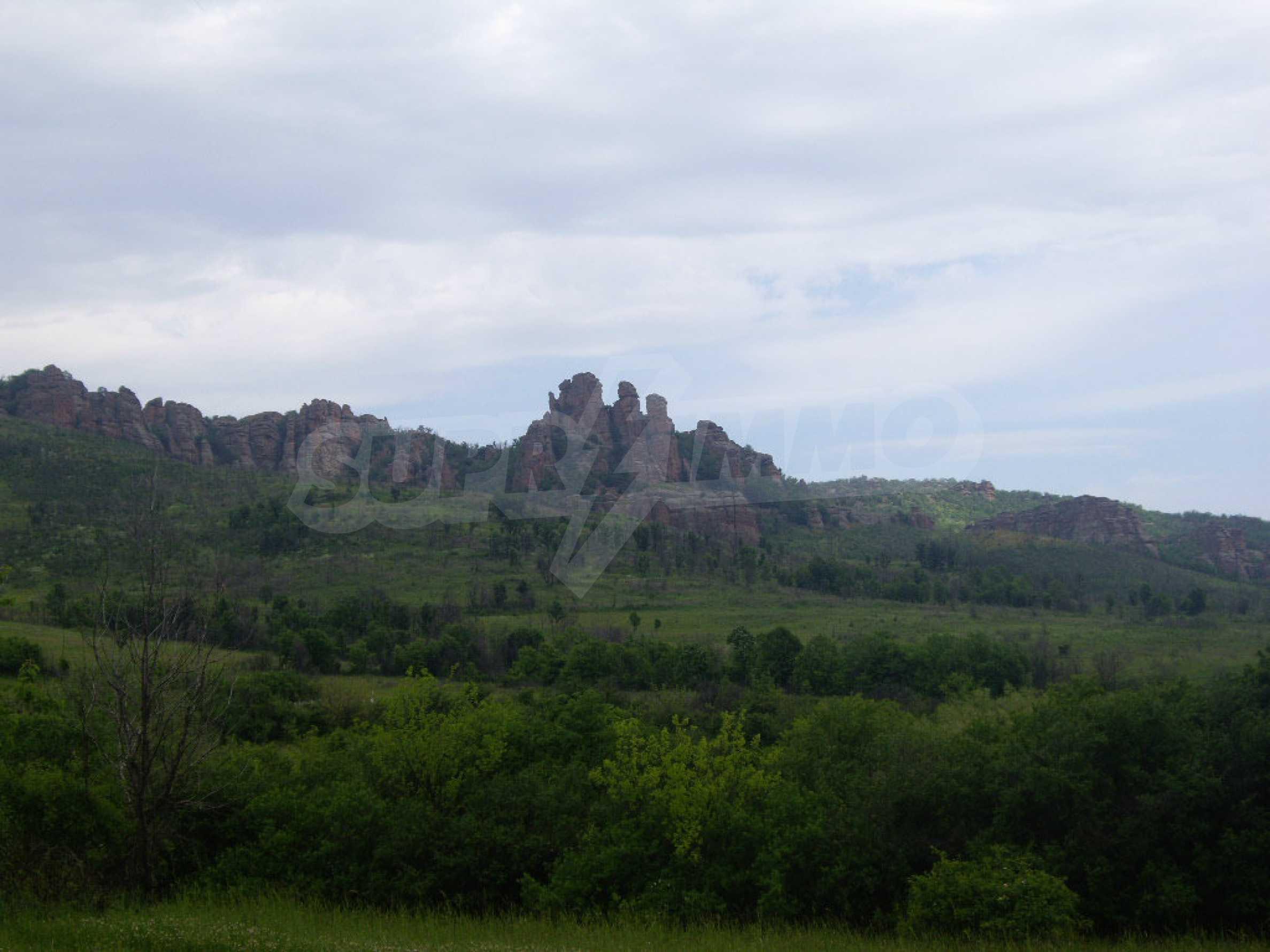 Großes unreguliertes Grundstück 50 km von Vidin entfernt 10