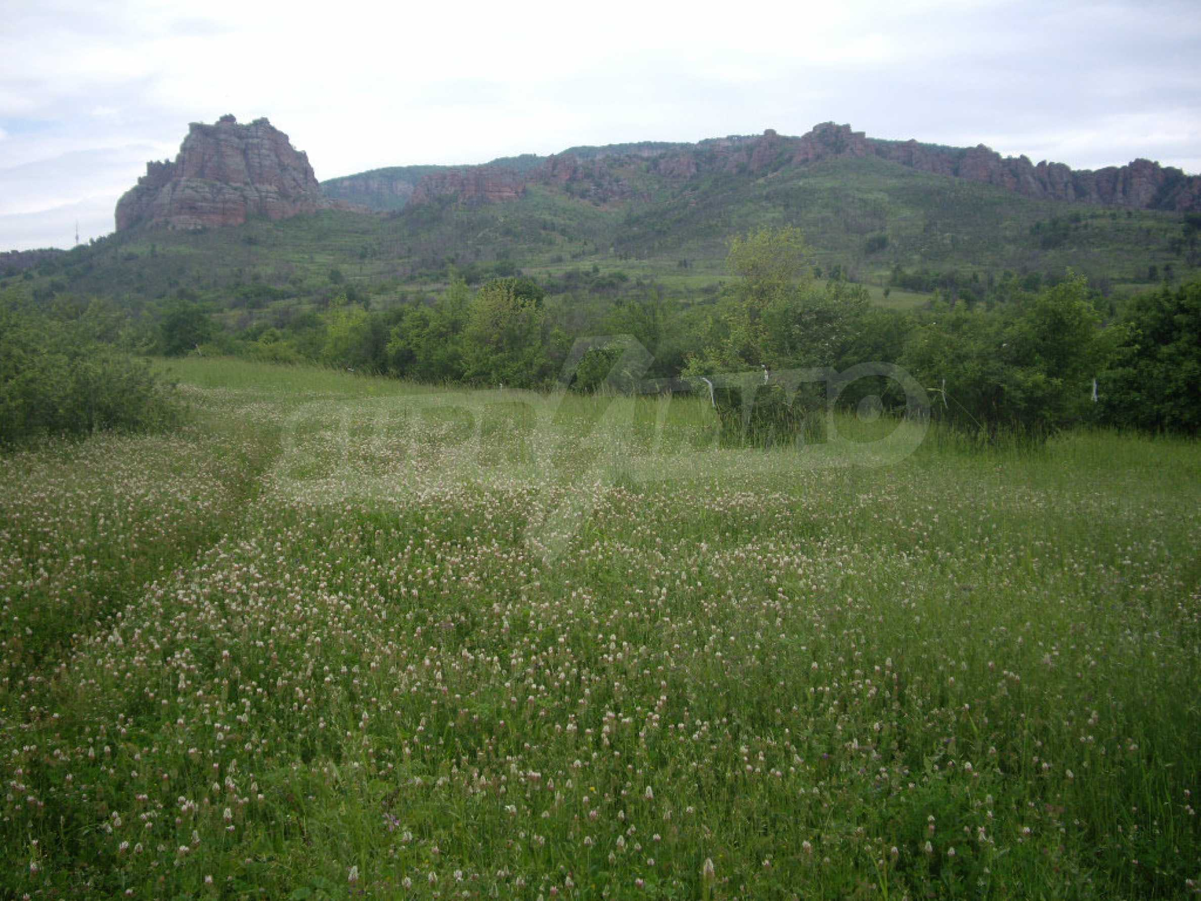 Großes unreguliertes Grundstück 50 km von Vidin entfernt 13