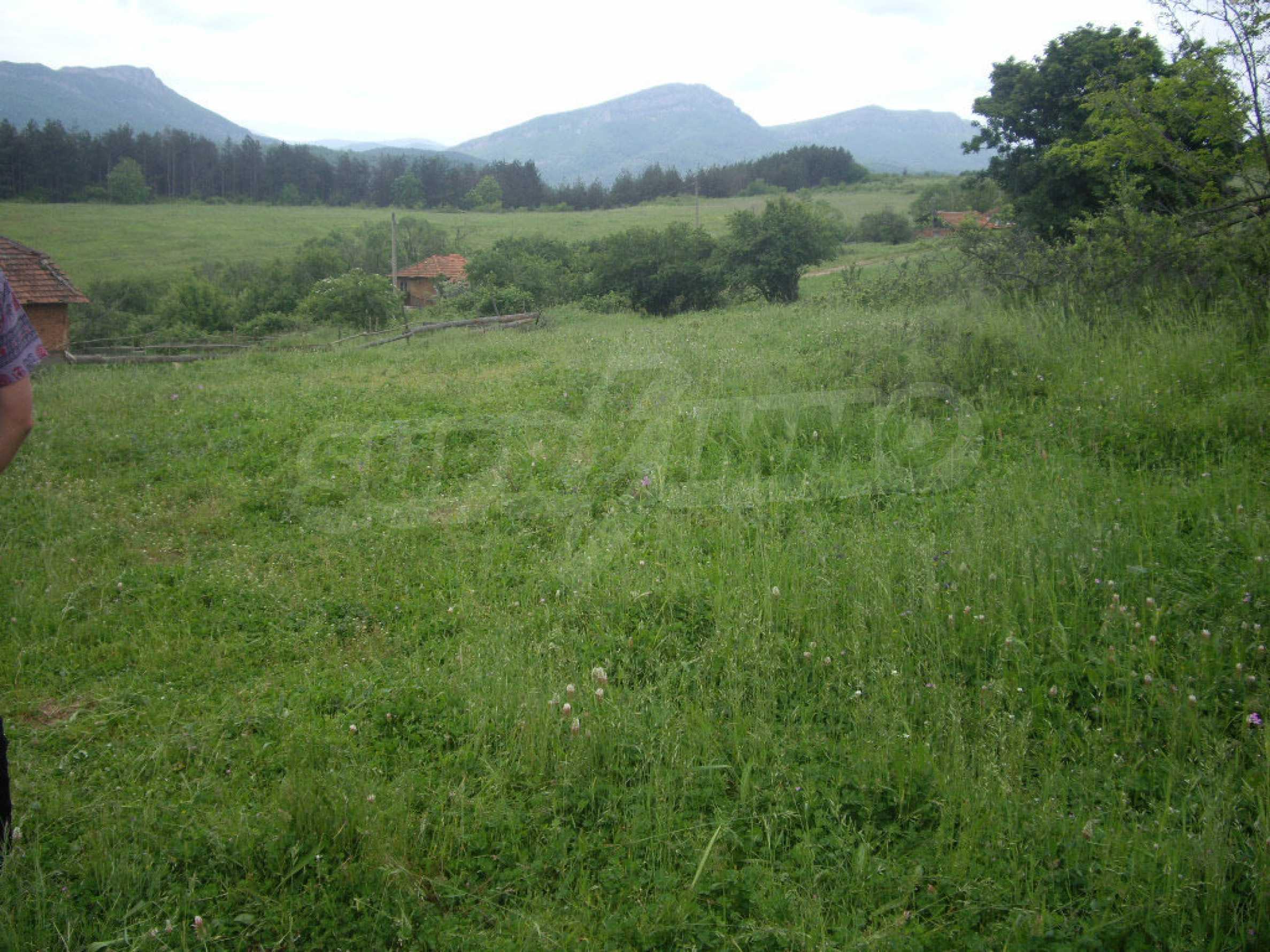 Großes unreguliertes Grundstück 50 km von Vidin entfernt 14