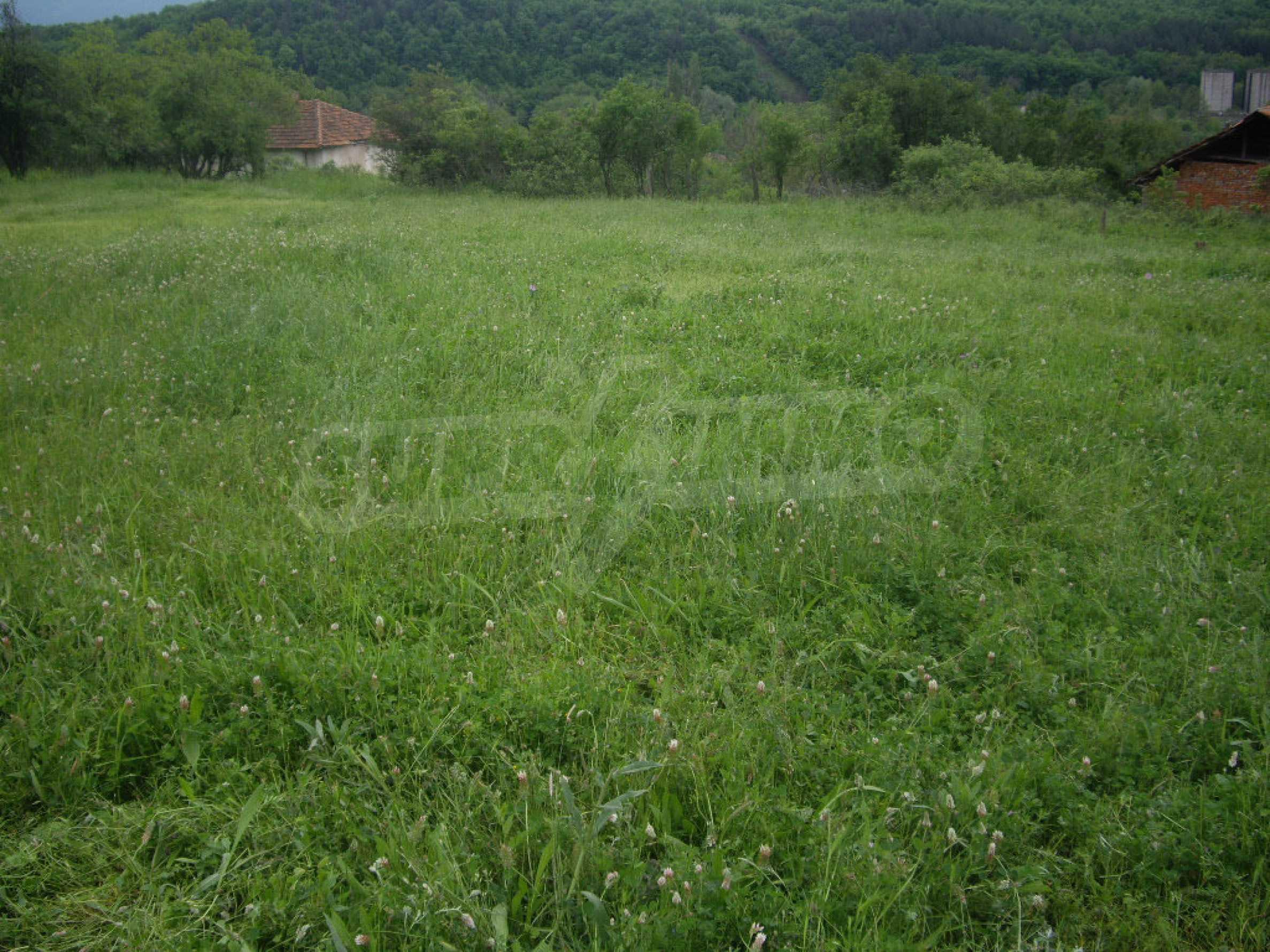 Großes unreguliertes Grundstück 50 km von Vidin entfernt 15