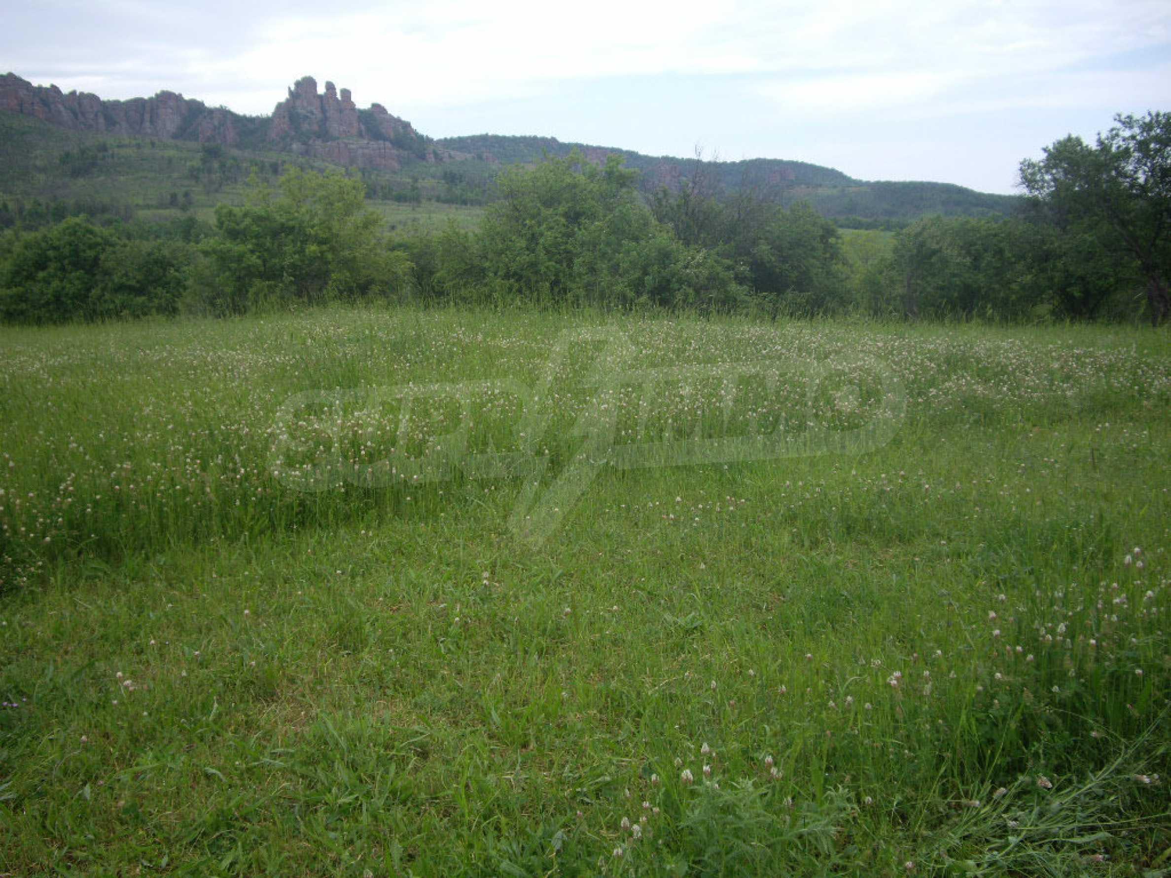 Großes unreguliertes Grundstück 50 km von Vidin entfernt 16