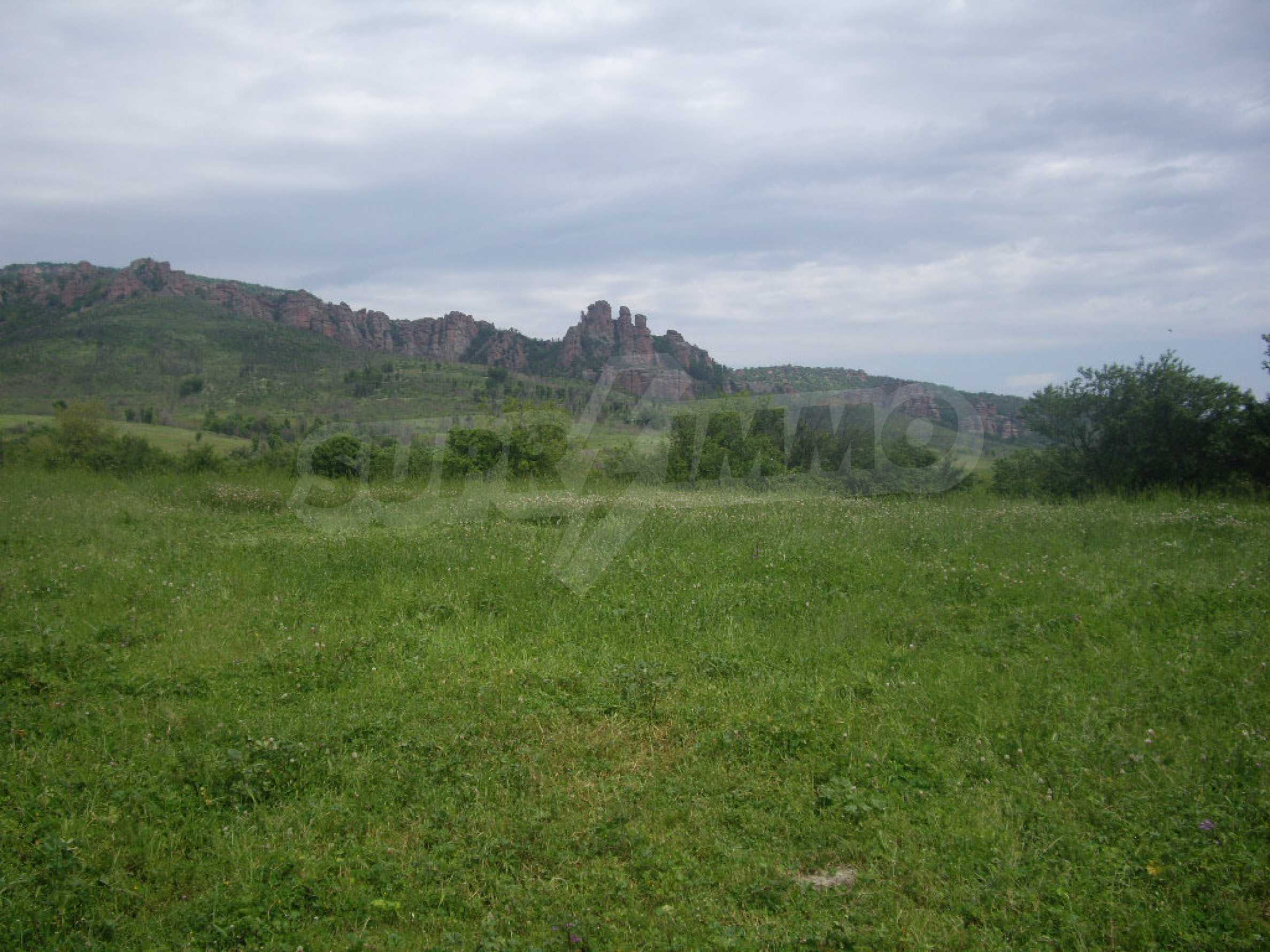 Großes unreguliertes Grundstück 50 km von Vidin entfernt 17