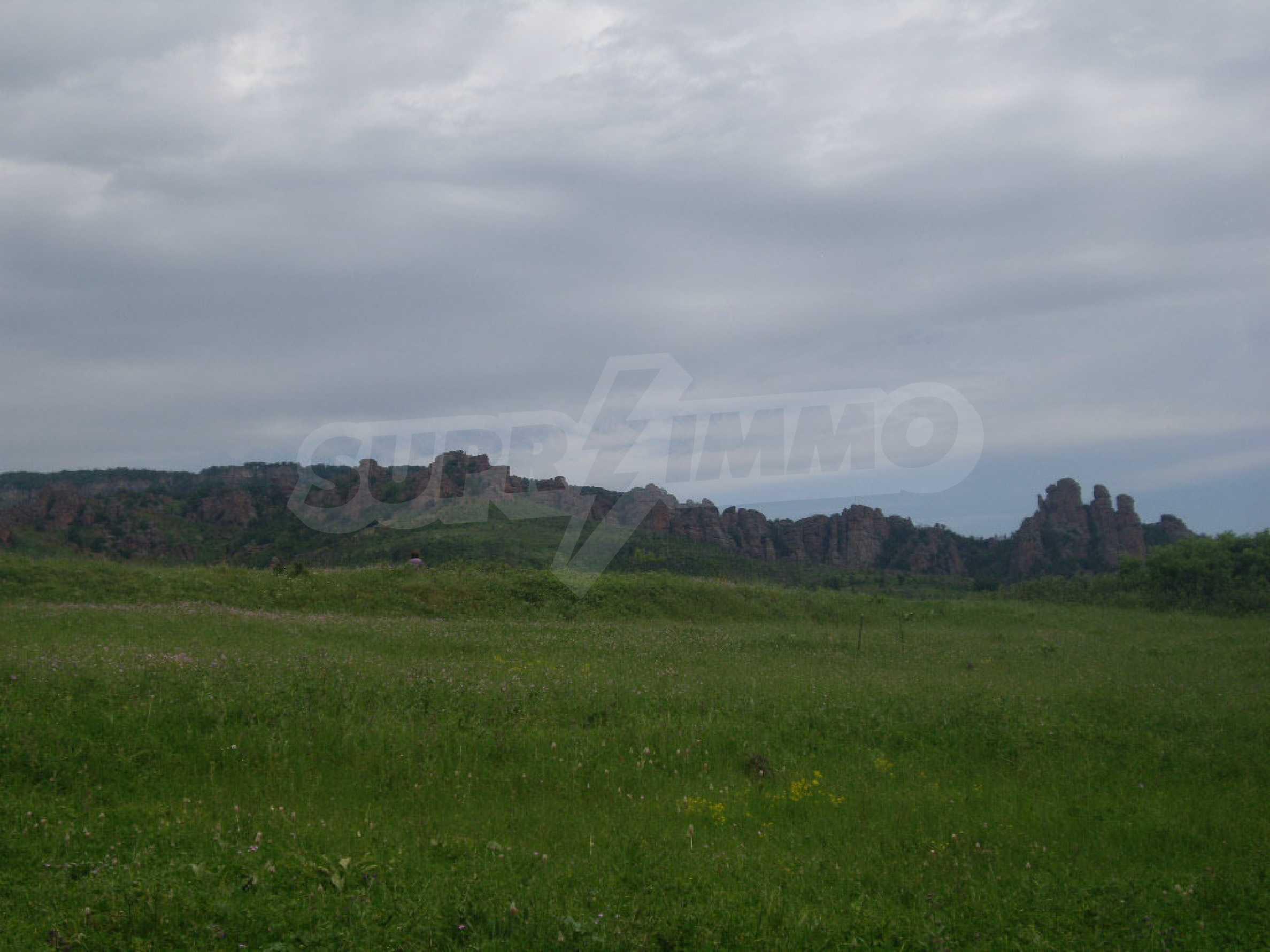 Großes unreguliertes Grundstück 50 km von Vidin entfernt 1
