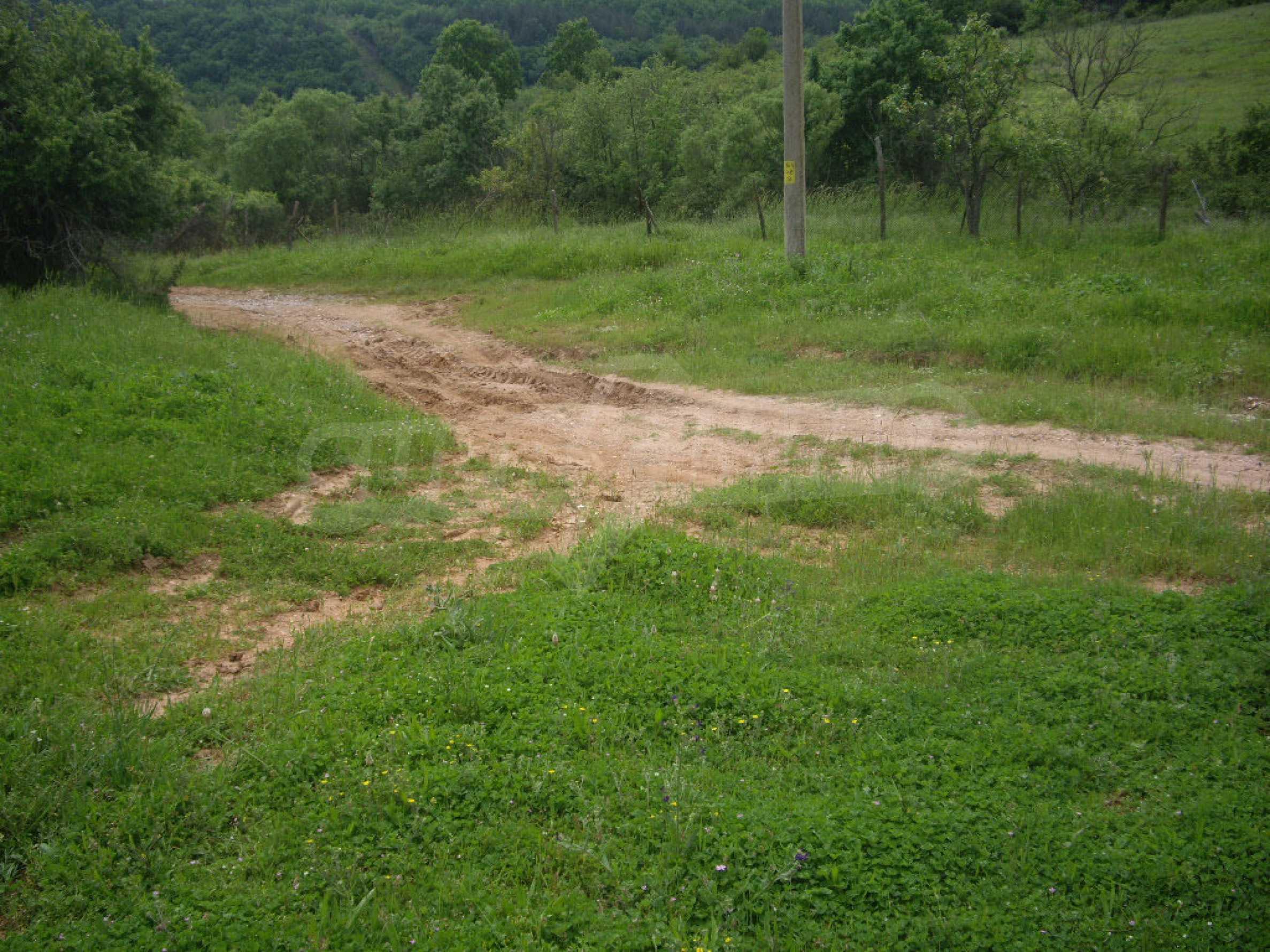 Großes unreguliertes Grundstück 50 km von Vidin entfernt 2