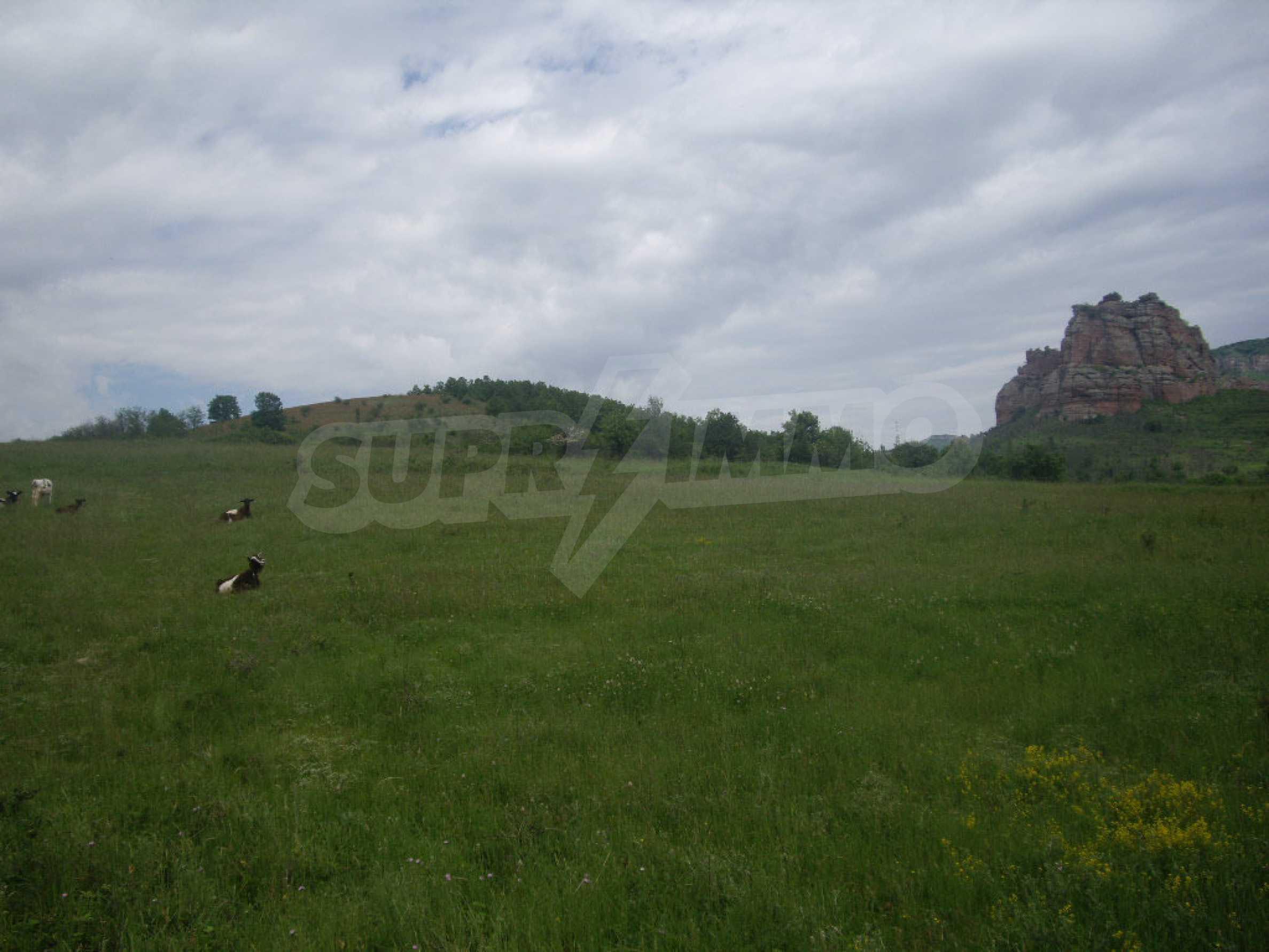 Großes unreguliertes Grundstück 50 km von Vidin entfernt 3