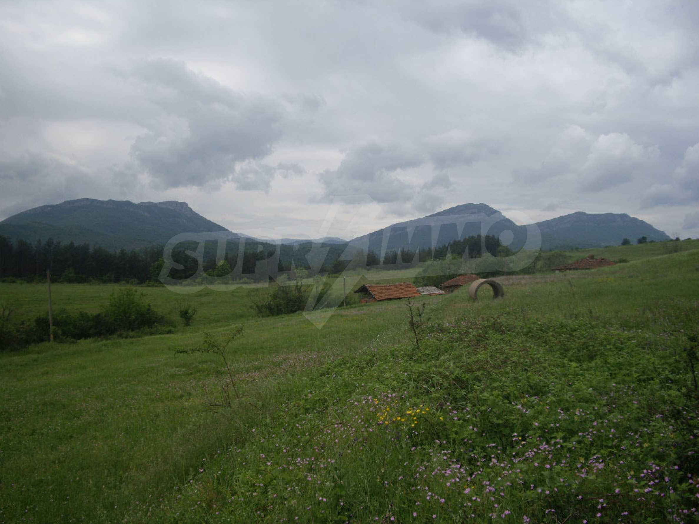 Großes unreguliertes Grundstück 50 km von Vidin entfernt 4